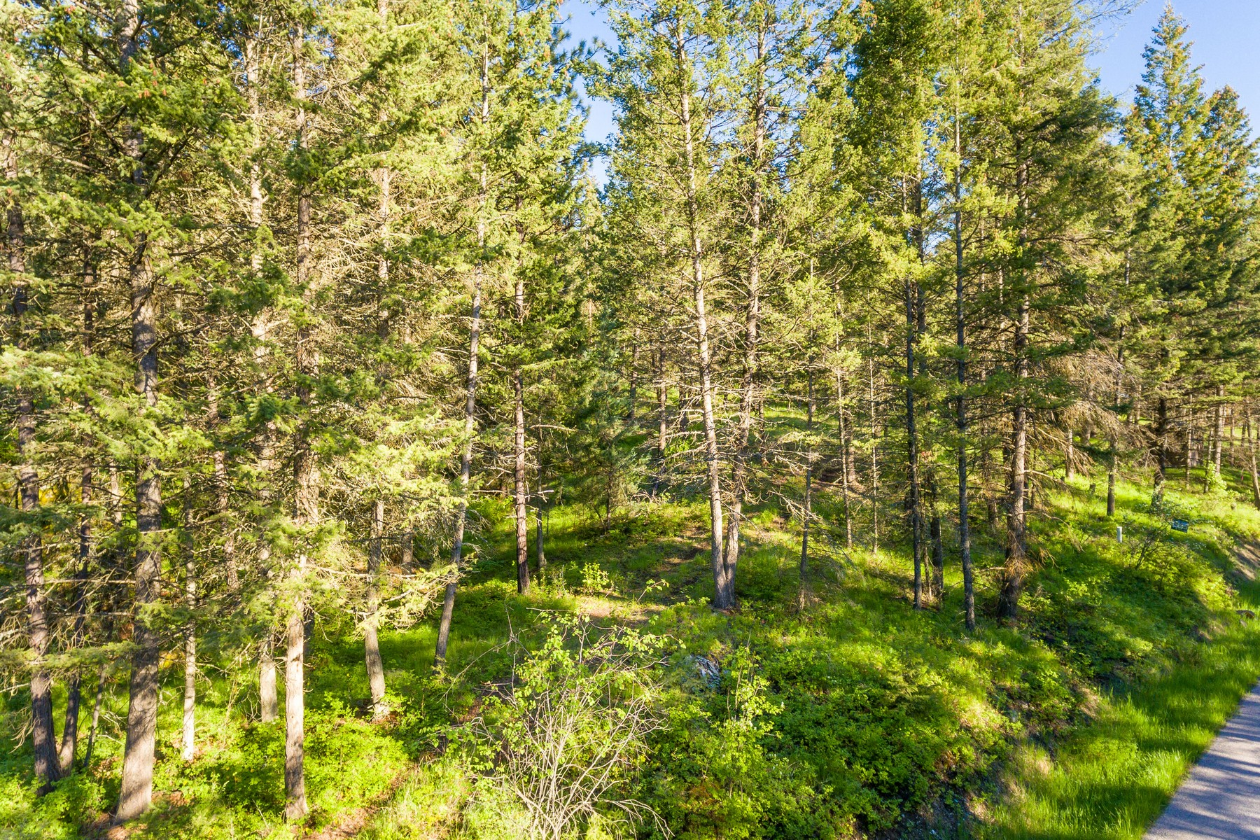 Land for Sale at 110 Grandview Terrace, Lakeside, MT 59922 110 Grandview Terr Lakeside, Montana 59922 United States