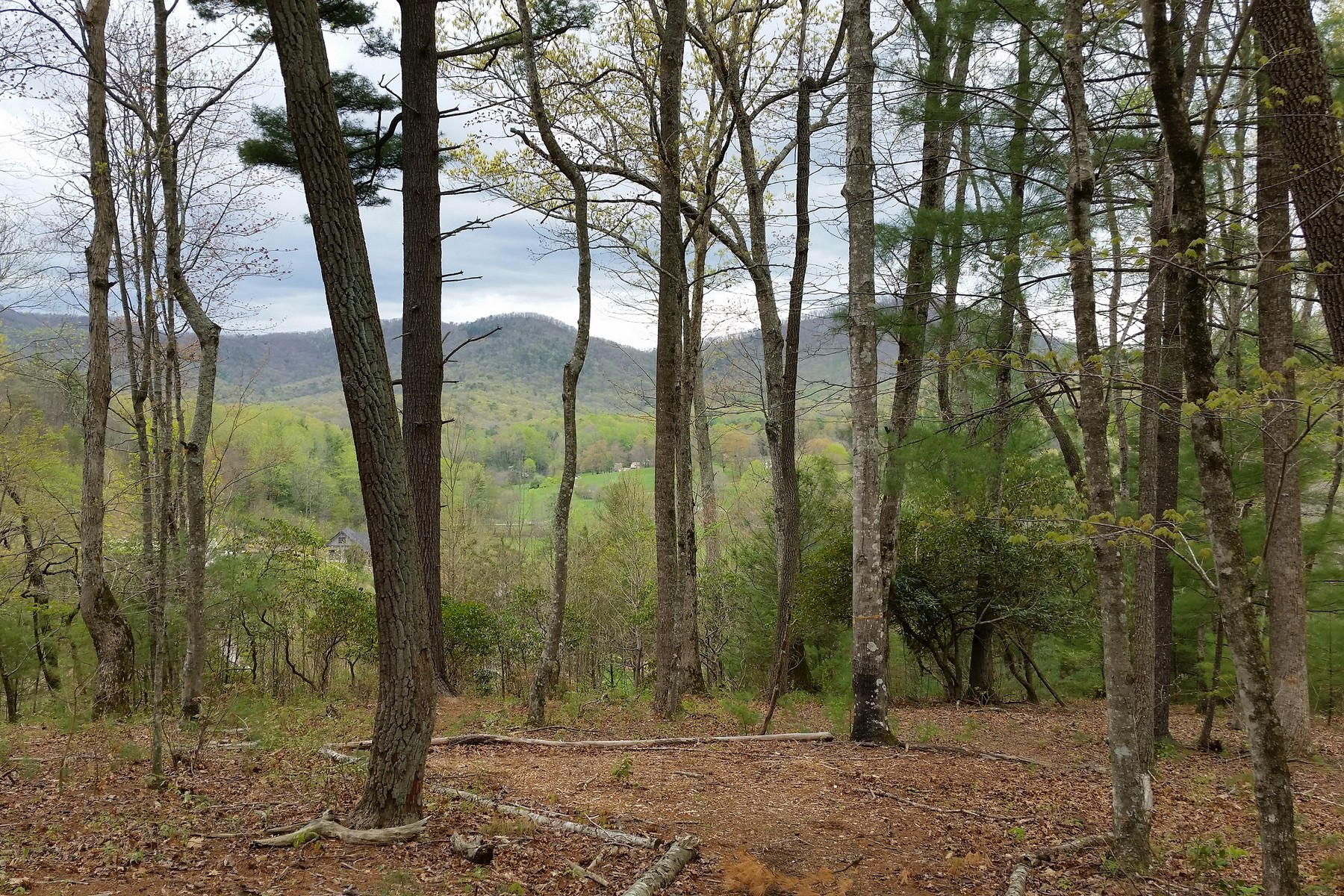 Land for Sale at THE CLIFFS AT WALNUT COVE 663 Walnut Valley Pkwy Lot 14 Arden, North Carolina, 28704 United StatesIn/Around: Asheville