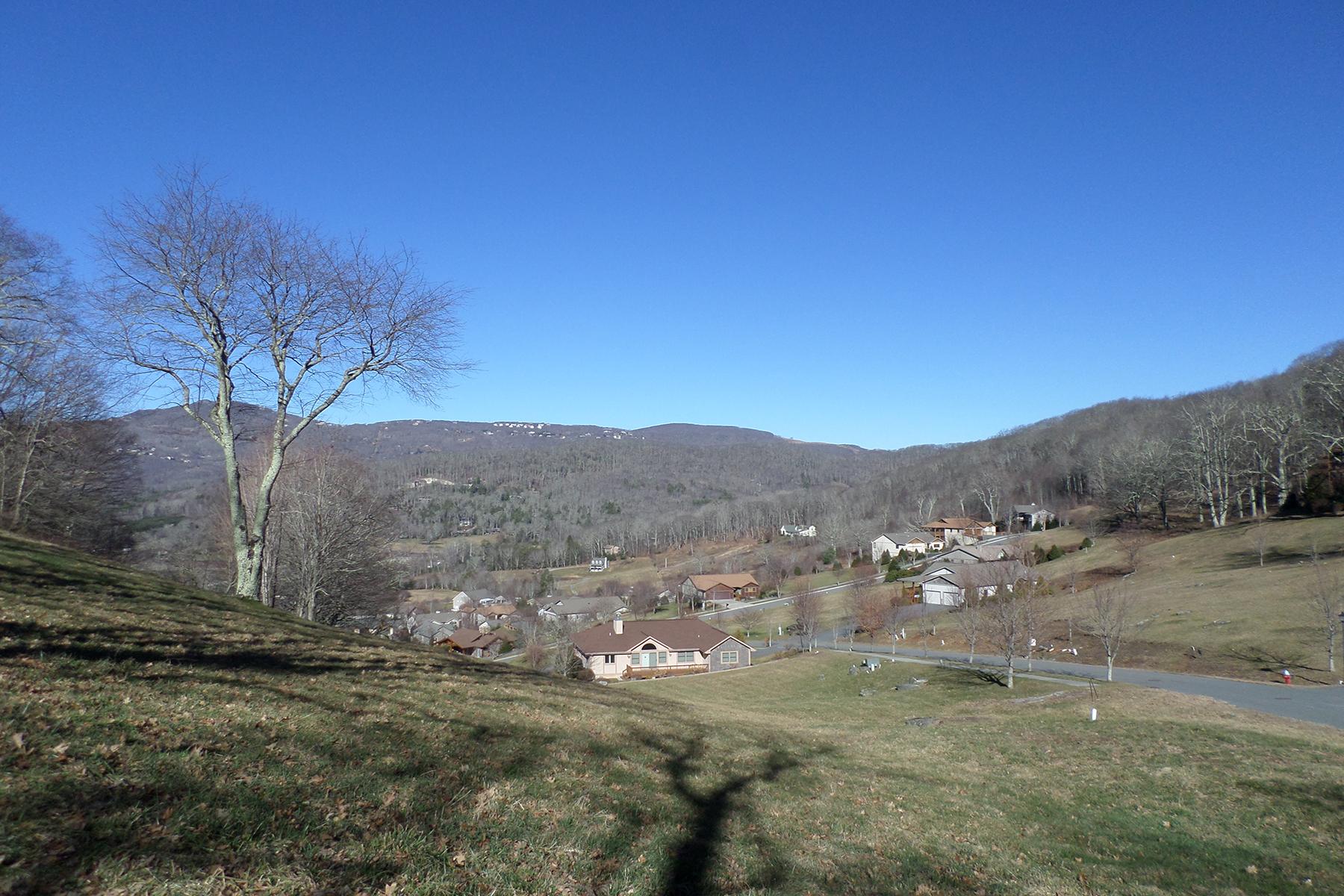 Additional photo for property listing at BANNER ELK - APPLE ORCHARD Lot 96  Orchard Ln,  Banner Elk, North Carolina 28604 United States