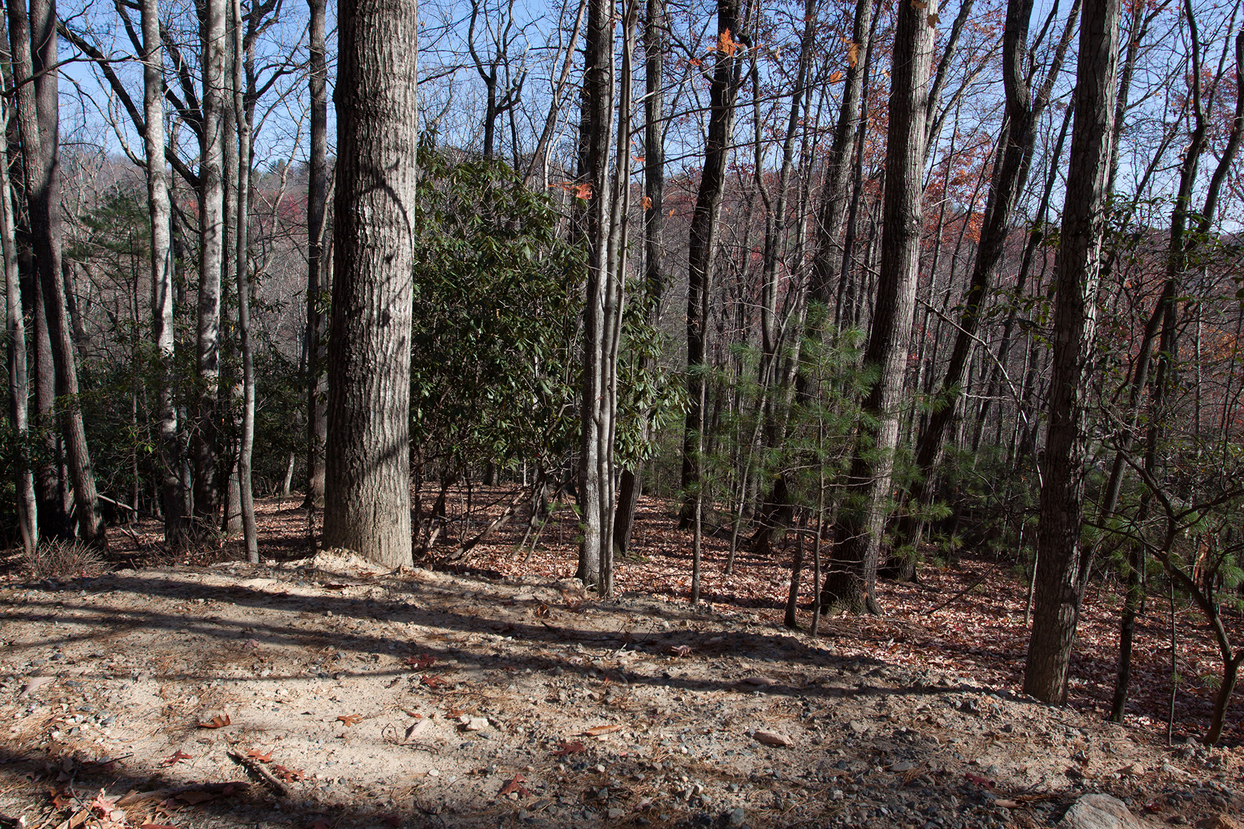 Land for Active at DEEP GAP - POWDERHORN Lt 20,21 Trout Lake Rd Deep Gap, North Carolina 28618 United States