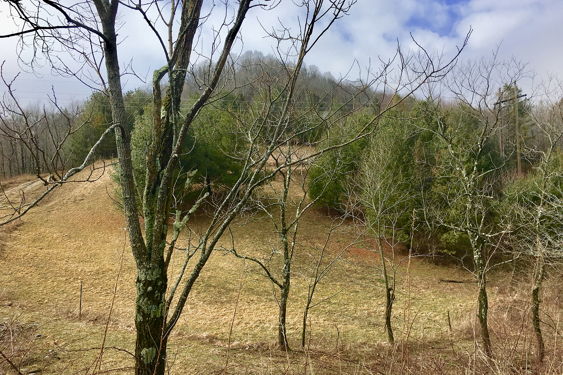 Land for Sale at NEWLAND TBD Turbyfill Rd, Newland, North Carolina 28657 United States
