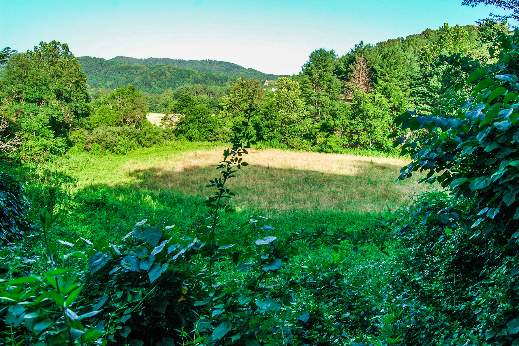 Additional photo for property listing at IDEAL FOR COMMERCIAL OR RESIDENTIAL USE 10  Silverwood Farm Rd,  Weaverville, North Carolina 28787 United States