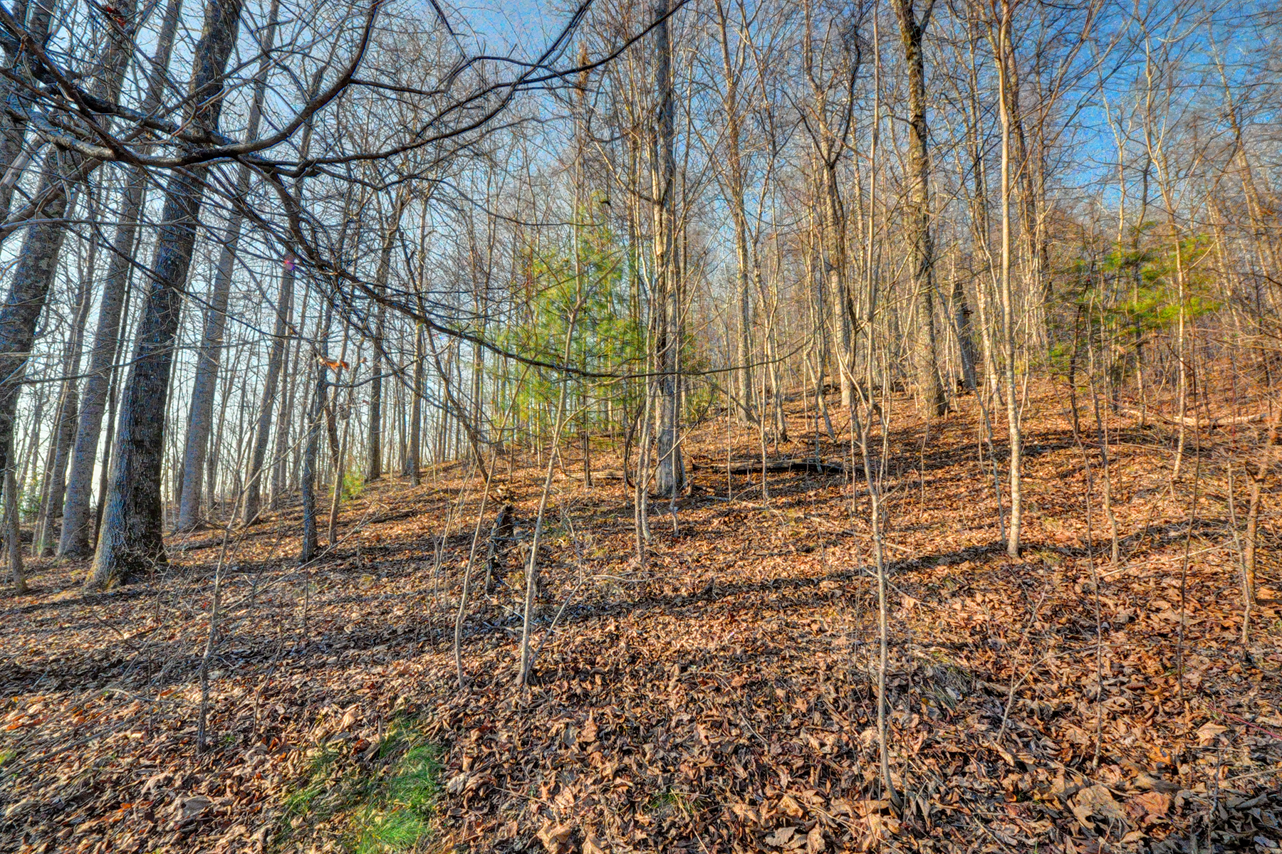 Land for Sale at OLETA FALLS 527 Overlook Park Dr 78 Phase II Hendersonville, North Carolina, 28792 United States