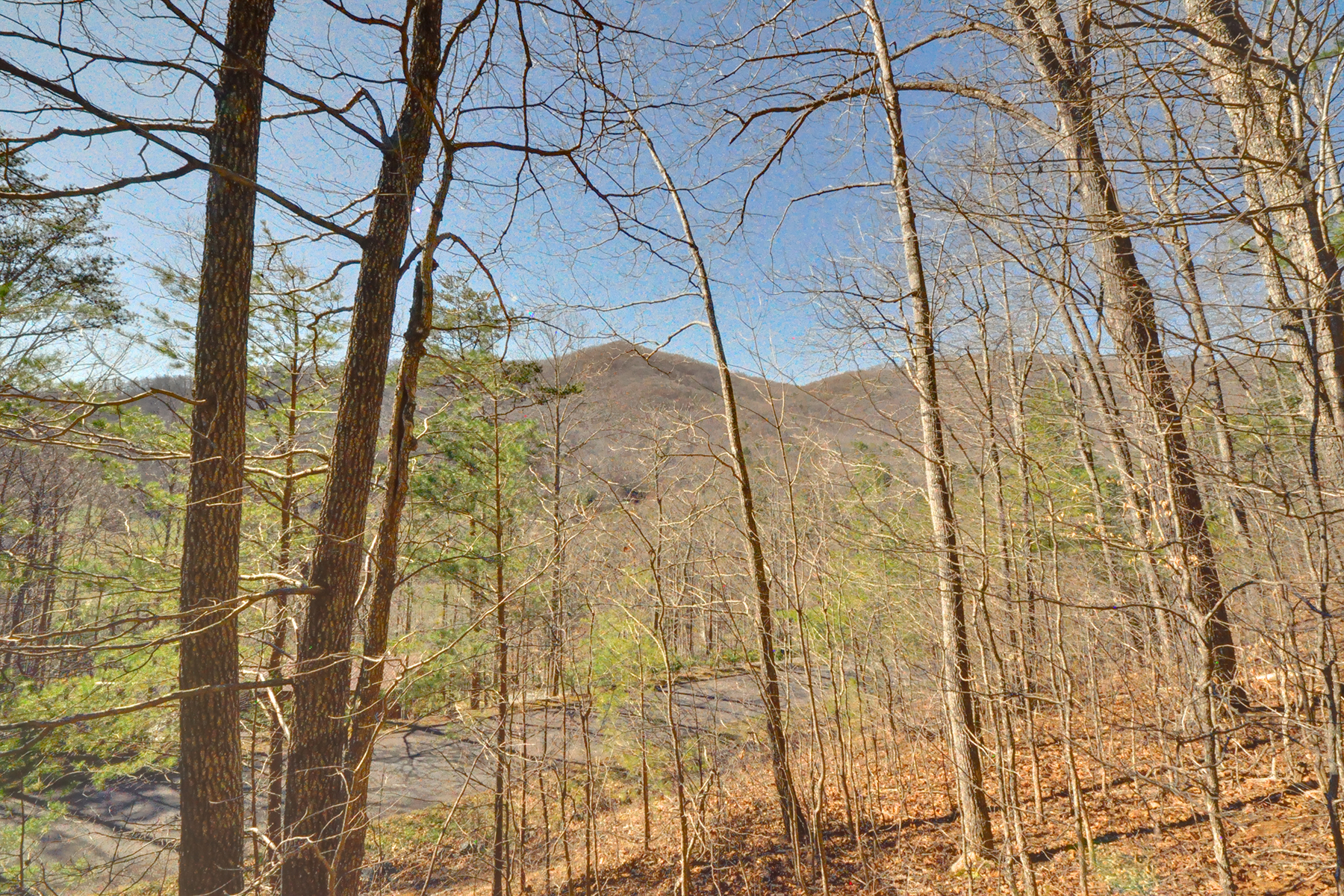 Land for Sale at BEAUTIFUL MOUNTAIN LOT 9999 Tryst Dr 6, Asheville, North Carolina 28805 United States