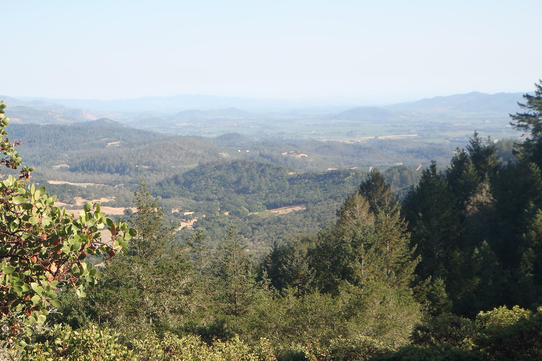 Land voor Verkoop een t Twenty-Six Acres of Valley and Mountain Views 815 Sulman Lane Angwin, Californië 94508 Verenigde Staten
