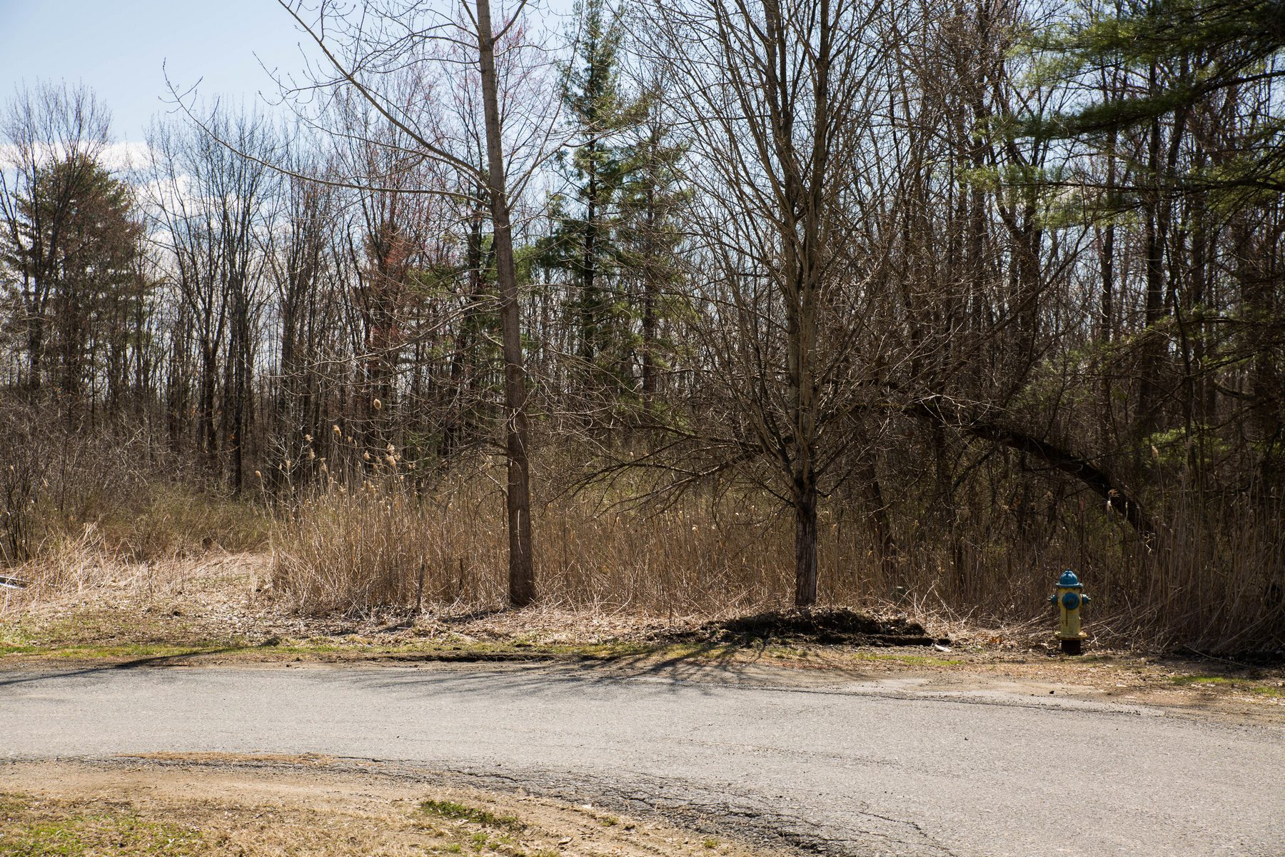 Land for Sale at Saratoga Springs Building Lot 6 Walden La Saratoga Springs, New York 12866 United States