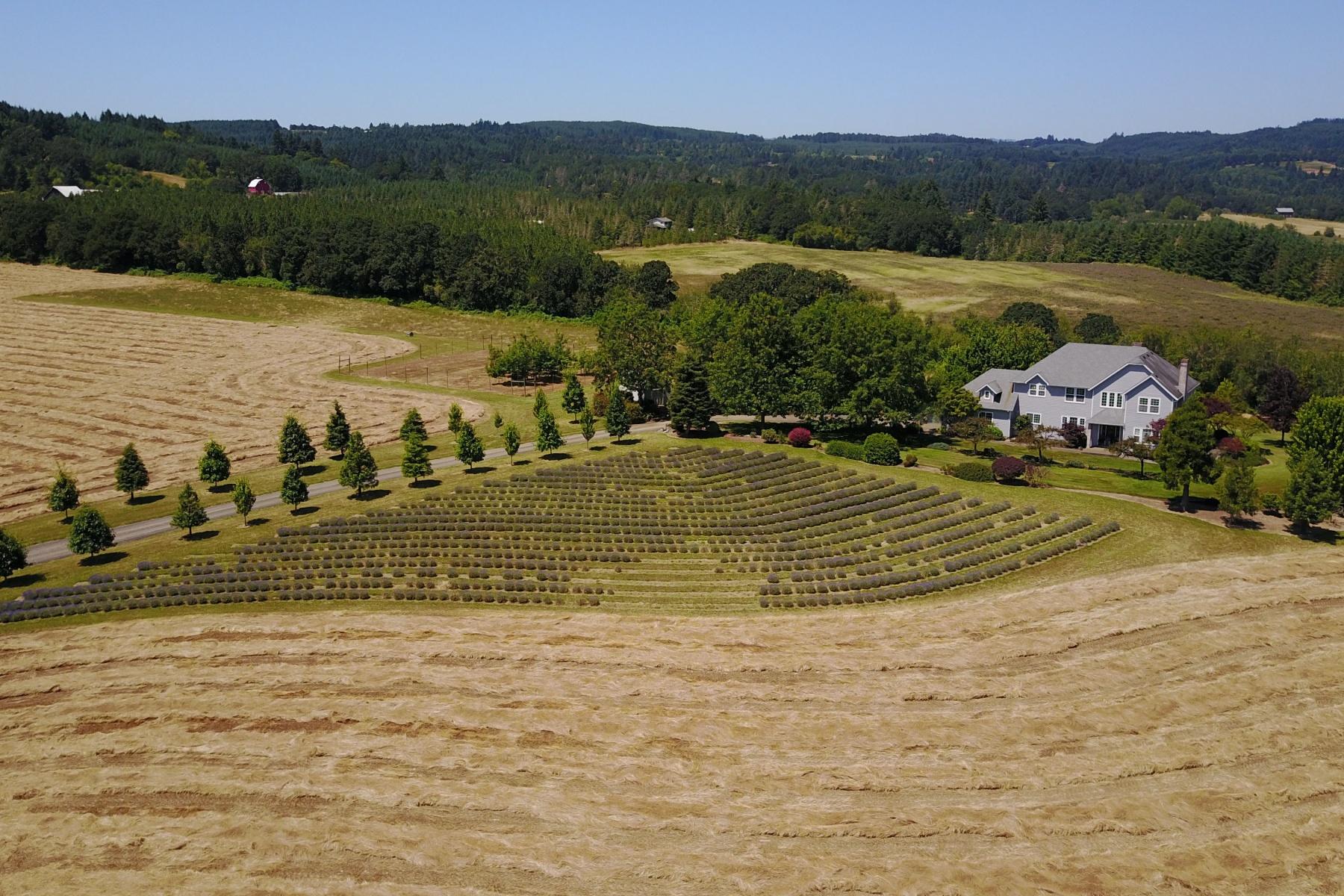 Single Family Homes pour l Vente à Yamhill, Oregon 97148 États-Unis