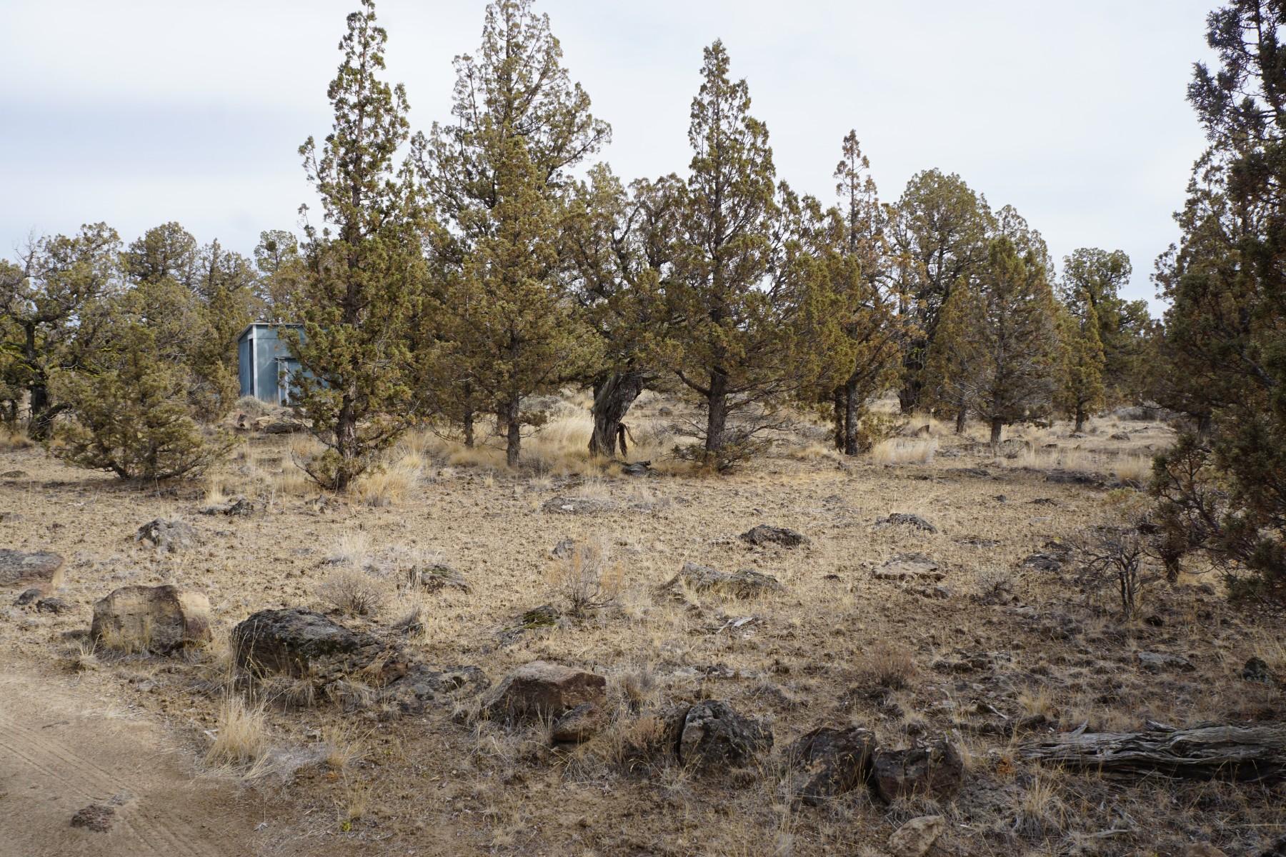 Land for Sale at 0-tl 1100 Se Omaha Road 0-TL 1100 SE Omaha Road Prineville, Oregon 97754 United States