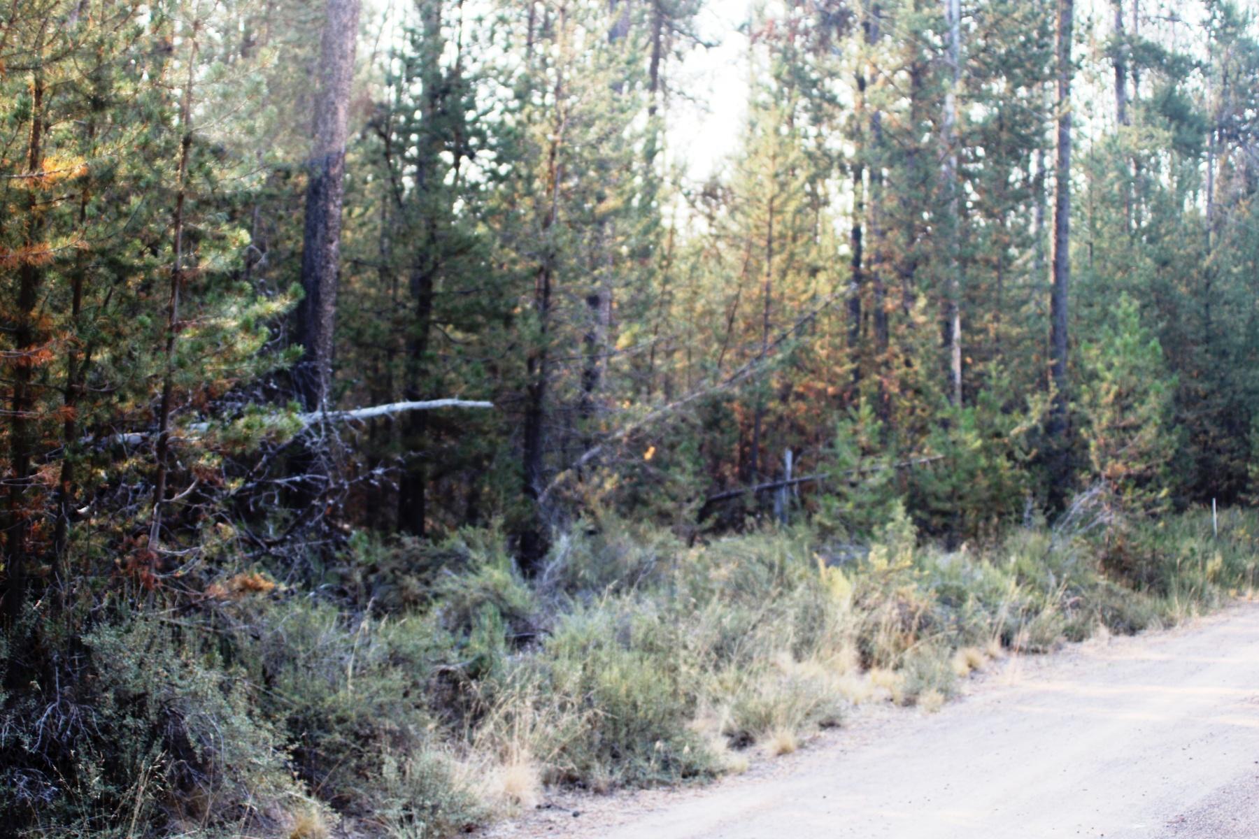 土地 為 出售 在 La Pine, 俄勒岡州 97739 美國