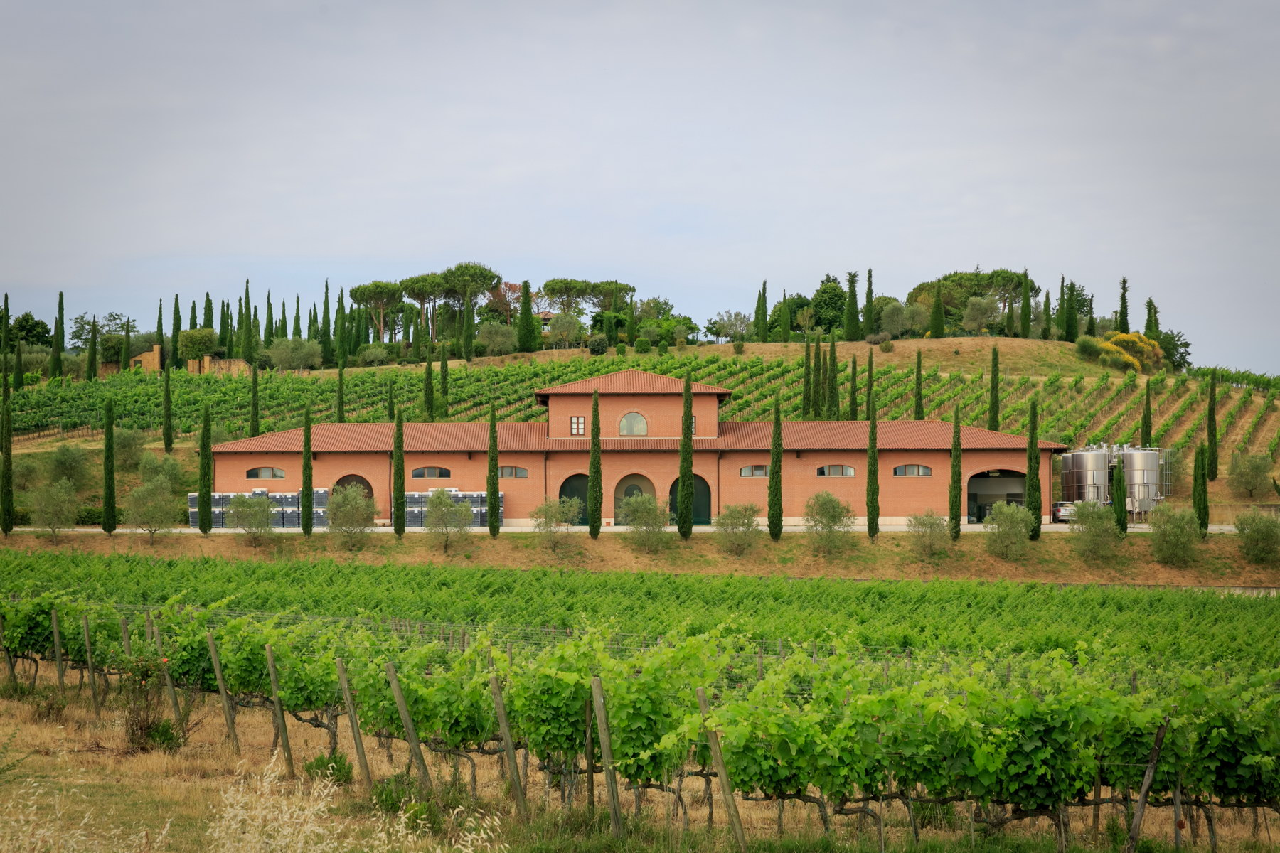 Other Residential Homes 為 出售 在 Wonderful wine estate with spectacular views of Montepulciano Montepulciano, Siena 義大利