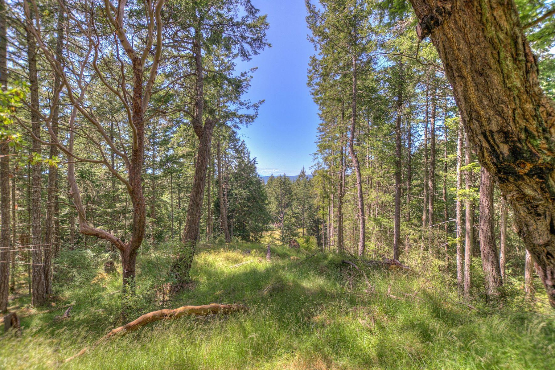 Land for Sale at 160 Vista Glen Dr, Eastsound, WA 98245 160 Vista Glen Dr Eastsound, Washington 98245 United States