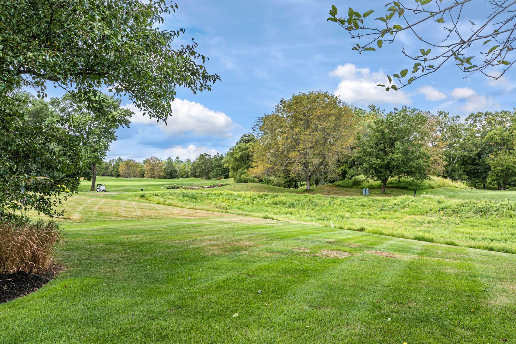 Additional photo for property listing at Impeccable On A Premium Cherry Valley Lot 11 Sea Island Court, Skillman, 新澤西州 08558 美國