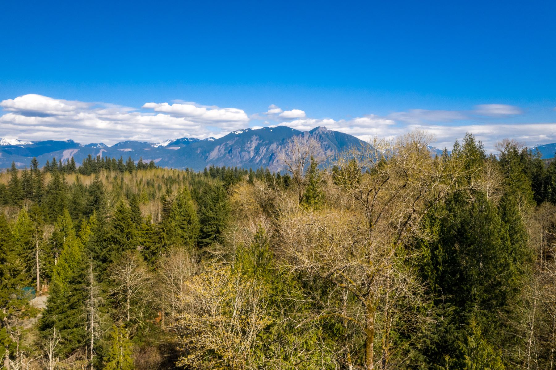 Land for Sale at X 356th Ave E, Snoqualmie, WA 98065 Snoqualmie, Washington 98065 United States