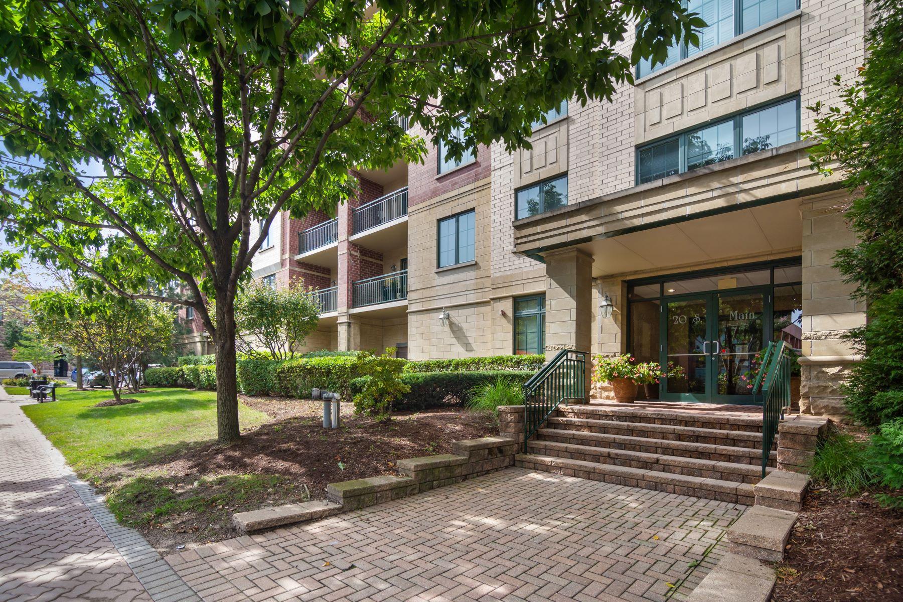 Condominiums para Venda às Bright and Spacious Condo 20 S Main Street Unit 303, Mount Prospect, Illinois 60056 Estados Unidos