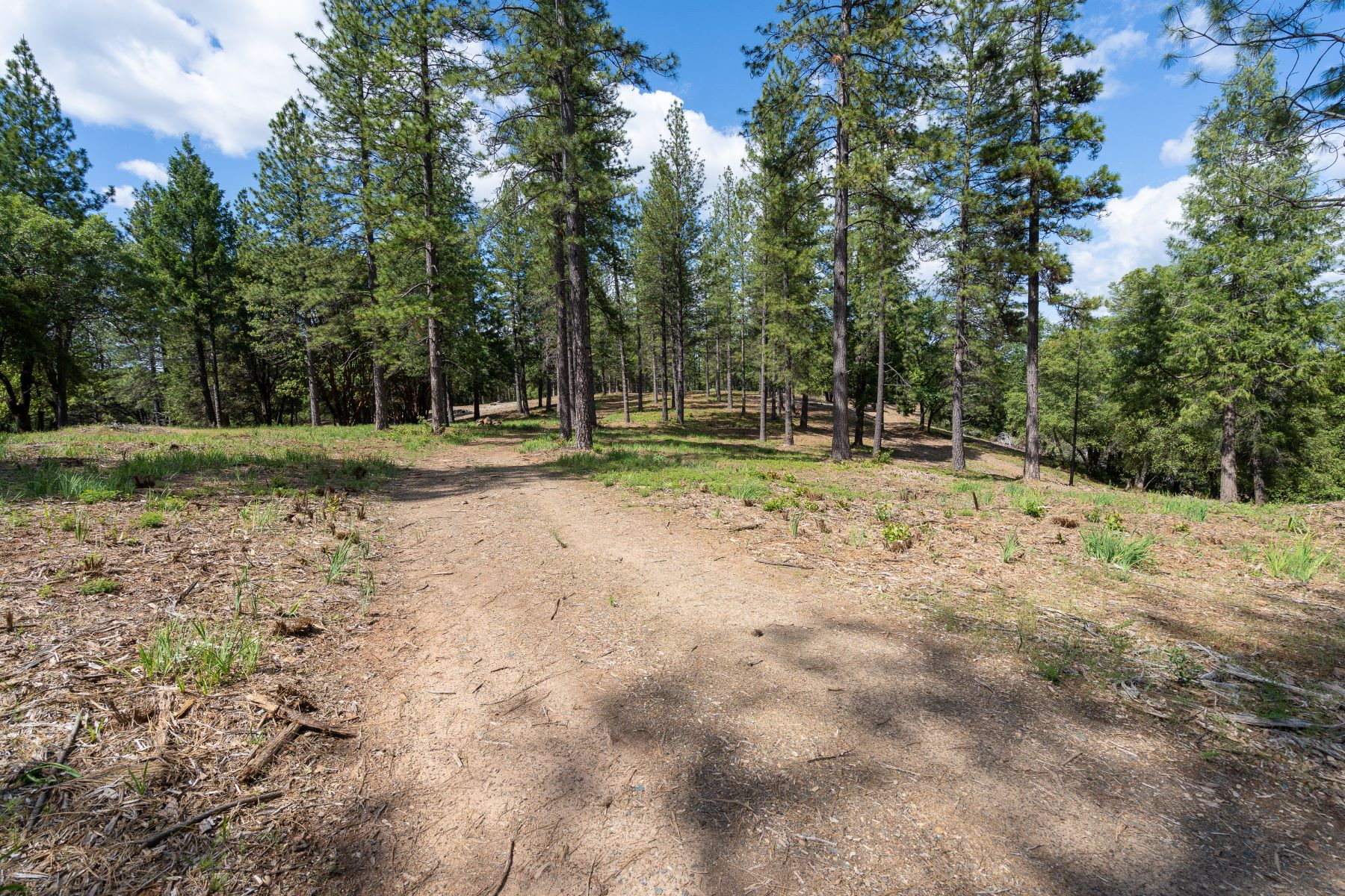 Land for Active at Lupe Road, Pine Grove, CA 95665 Lupe Road Pine Grove, California 95665 United States