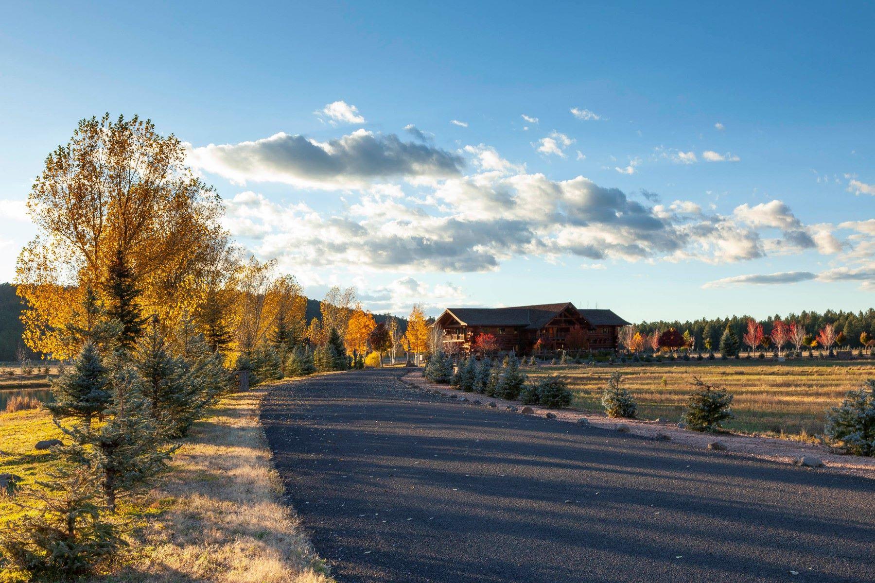 土地,用地 为 销售 在 Foxboro 18010 S Dixie LN 45 Munds Park, 亚利桑那州 86017 美国