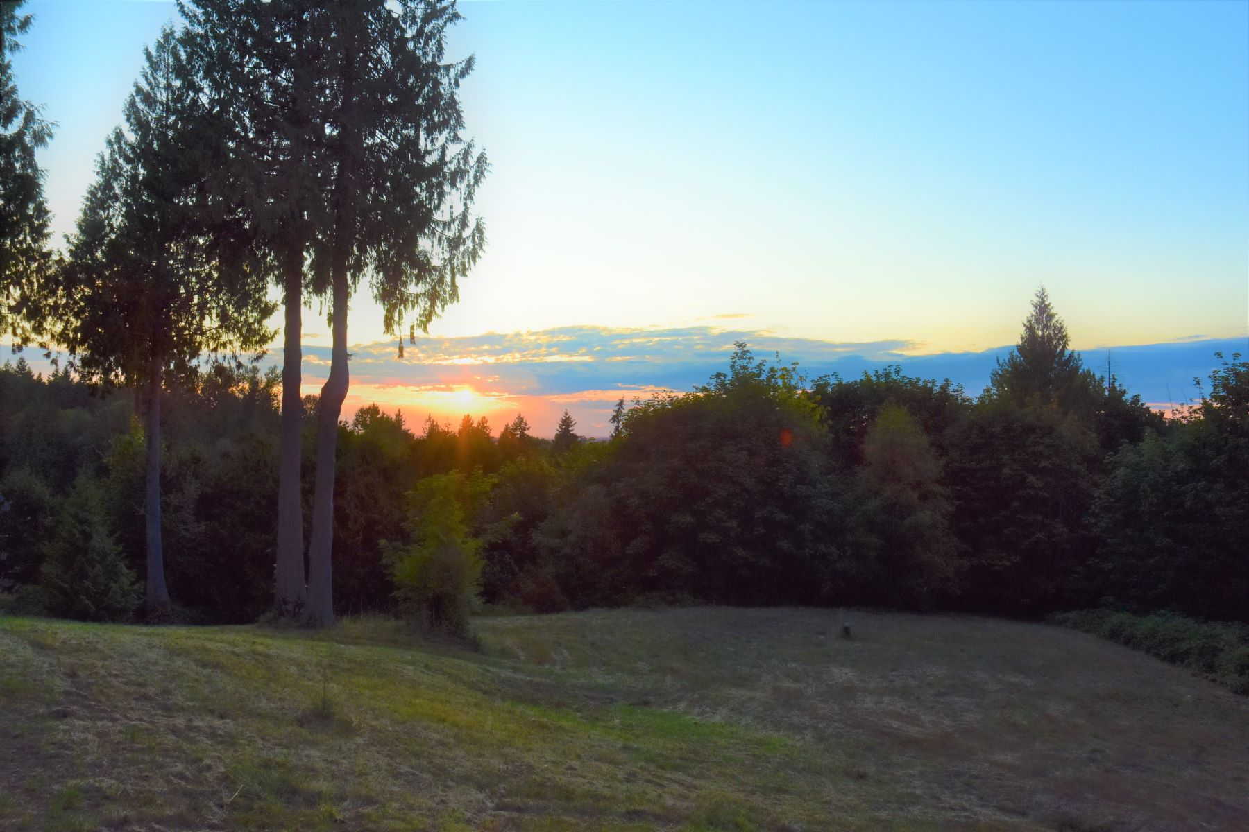 Single Family Homes for Sale at 26530 Black Nugget Rd, Issaquah, WA 98029 26530 Black Nugget Rd Issaquah, Washington 98029 United States