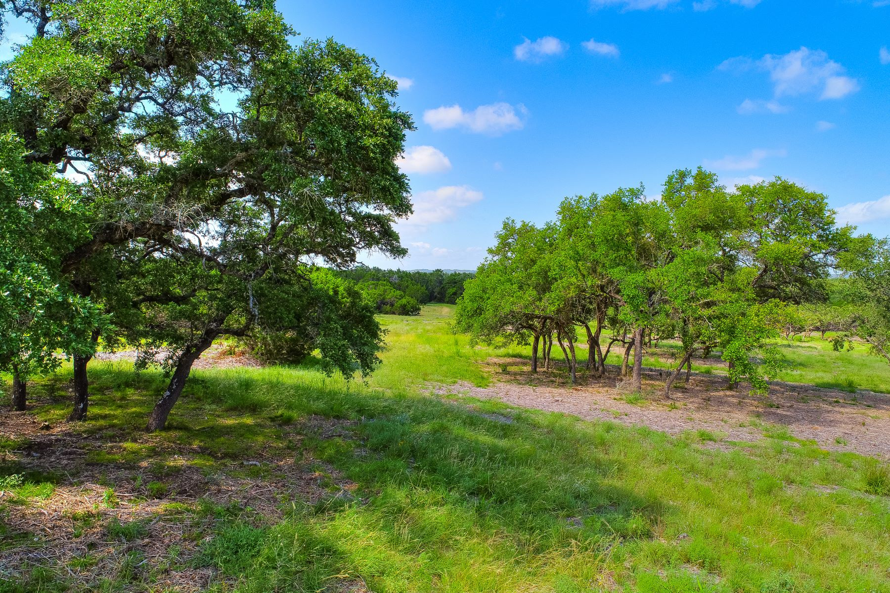 Land for Sale at 285 Calvary Cove, Dripping Springs, TX 78620 285 Calvary Cove Dripping Springs, Texas 78620 United States