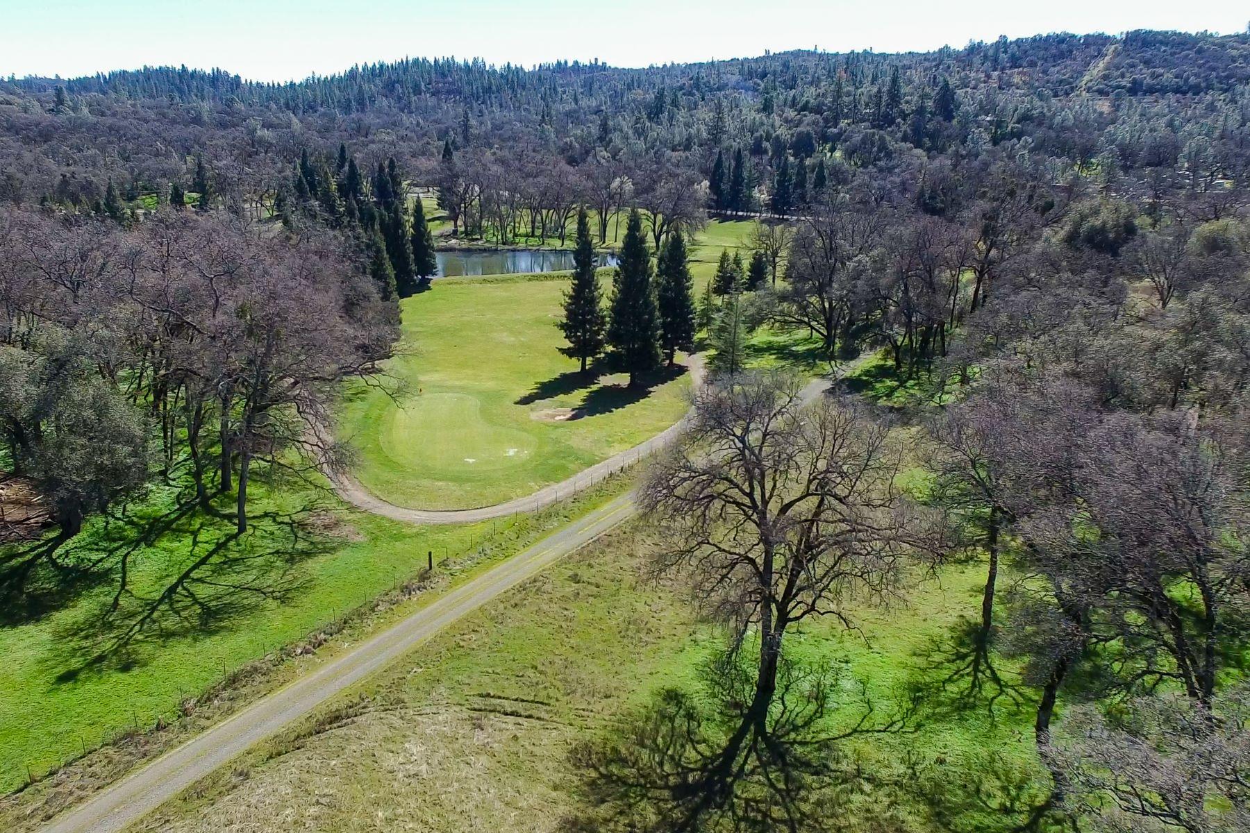 Terreno por un Venta en 13555 Dry Creek Road, Auburn, CA 95602 13555 Dry Creek Road Auburn, California 95602 Estados Unidos
