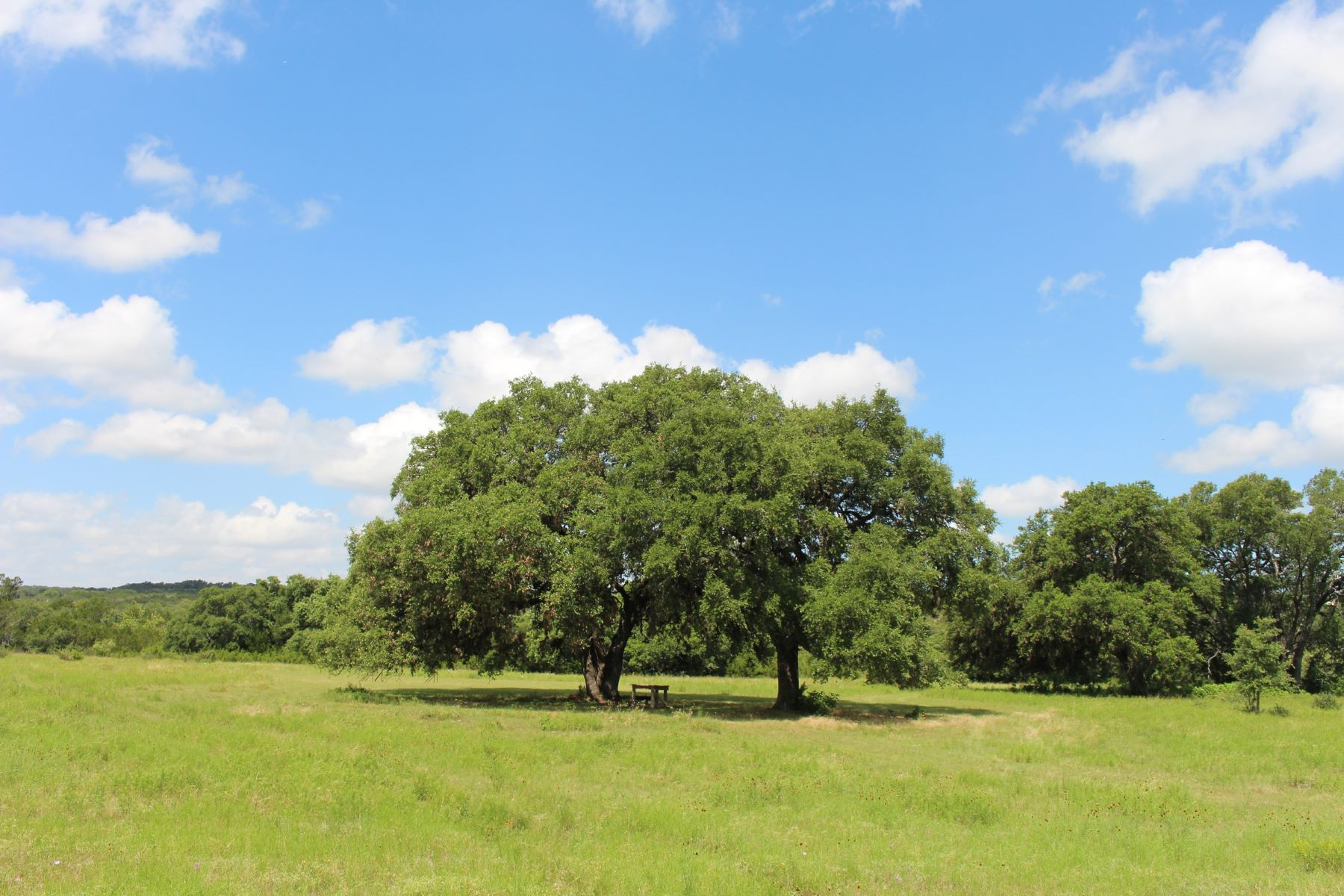 Farm / Ranch / Plantation for Sale at 2,000+/- Acres in Blanco County - Rafter 7 Ranch 2,000+/- Acres / Blanco County Johnson City, Texas 78620 United States