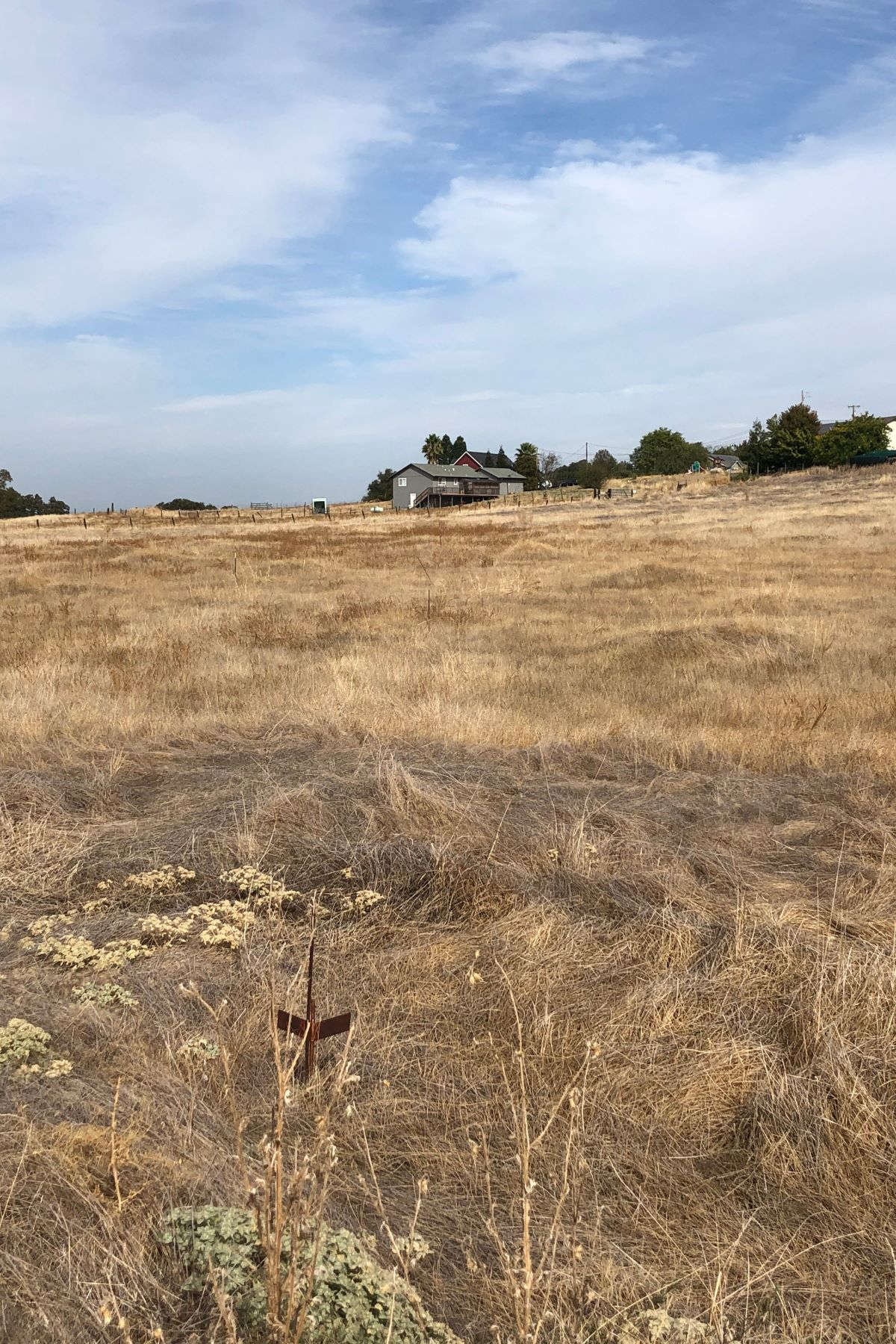 Land for Sale at 2781 Cheyenne Court, Ione, CA 95640 2781 Cheyenne Court Ione, California 95640 United States