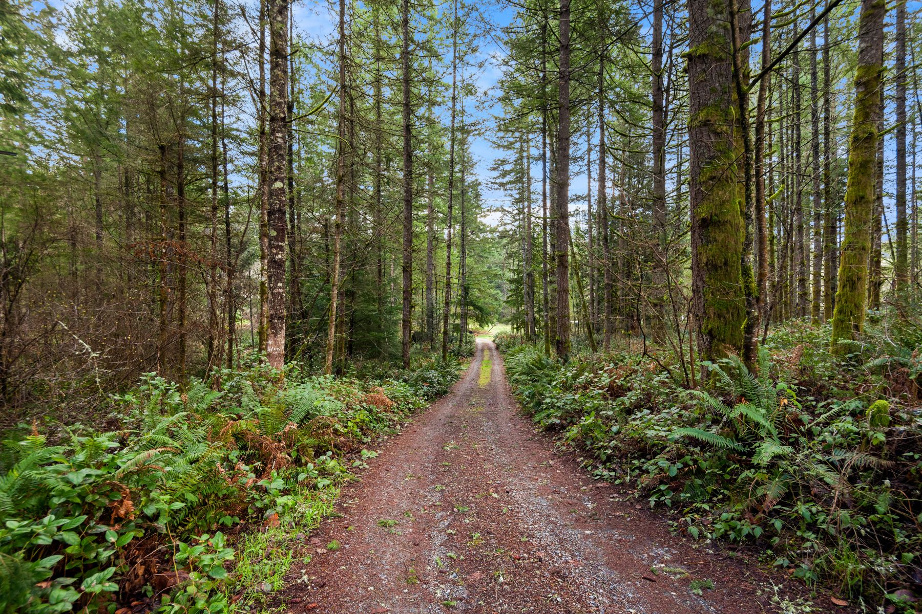 Land for Sale at 264 XX SE Duthie Hill Rd, Issaquah 98029 264Xx SE Duthie Hill Rd Issaquah, Washington 98029 United States