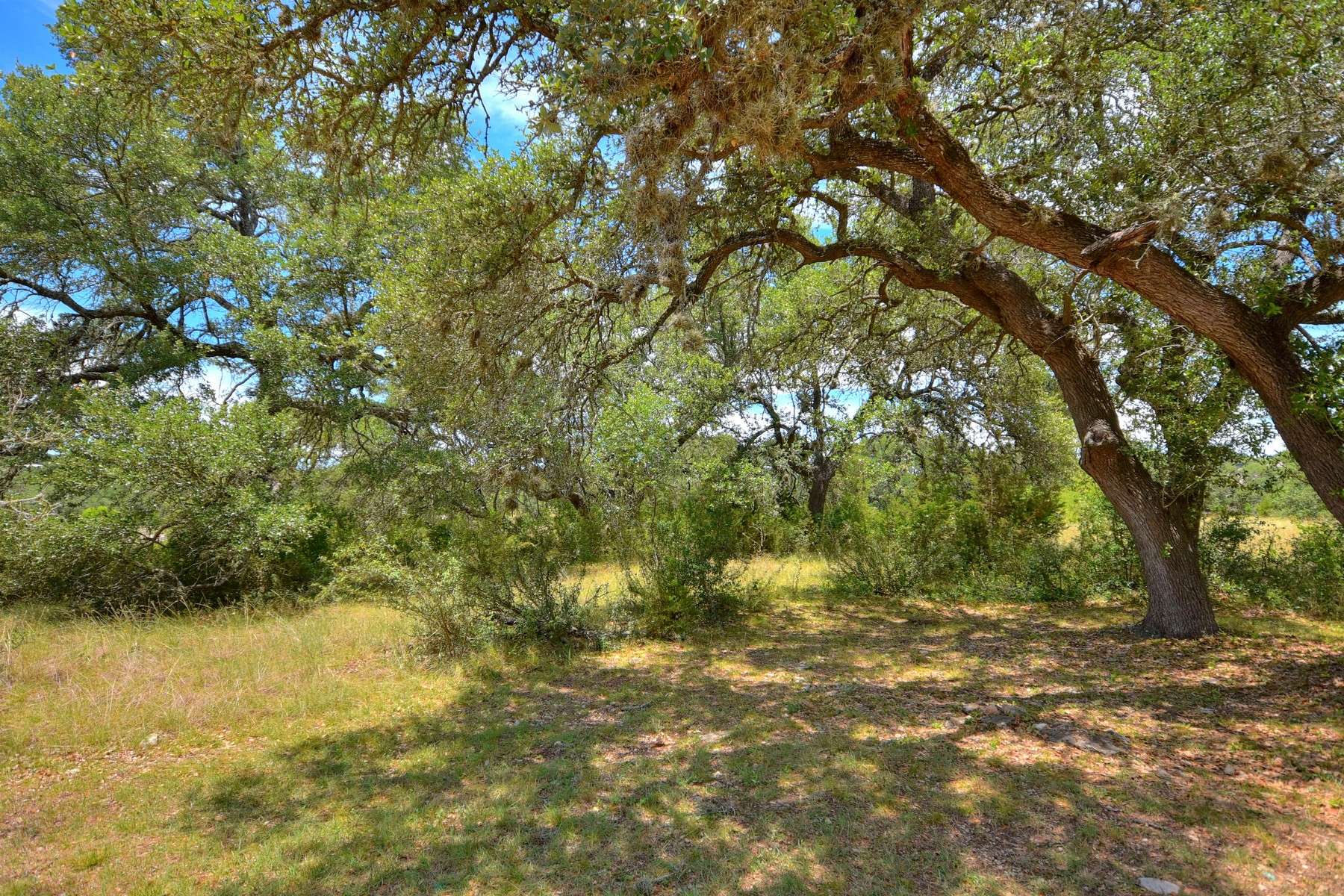 Additional photo for property listing at Beautiful Belvedere with Large Shade Trees 8417 Lakewood Ridge Cv Austin, Texas 78738 United States