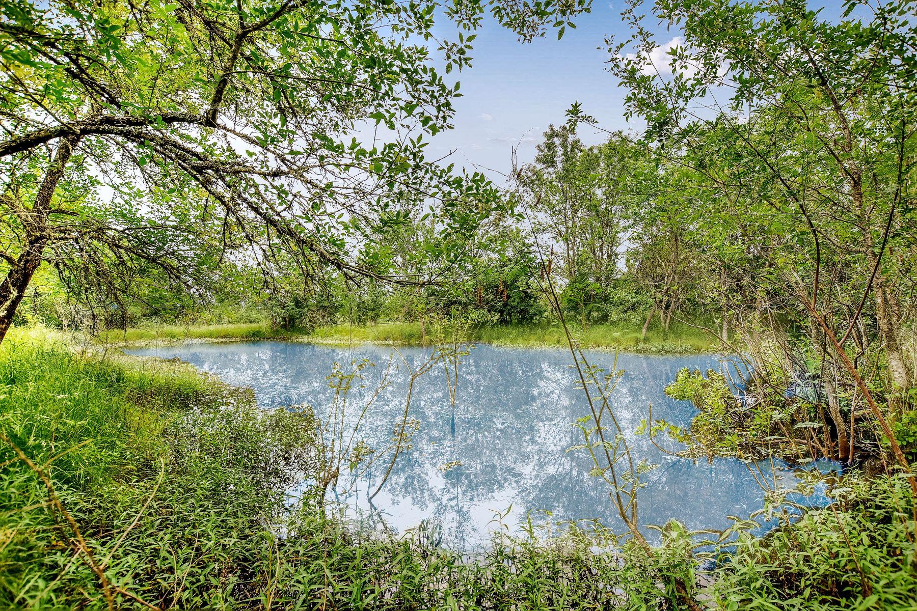Farm / Ranch / Plantation for Sale at Hwy 21, Cedar Creek, TX 78602 Hwy 21 Cedar Creek, Texas 78602 United States