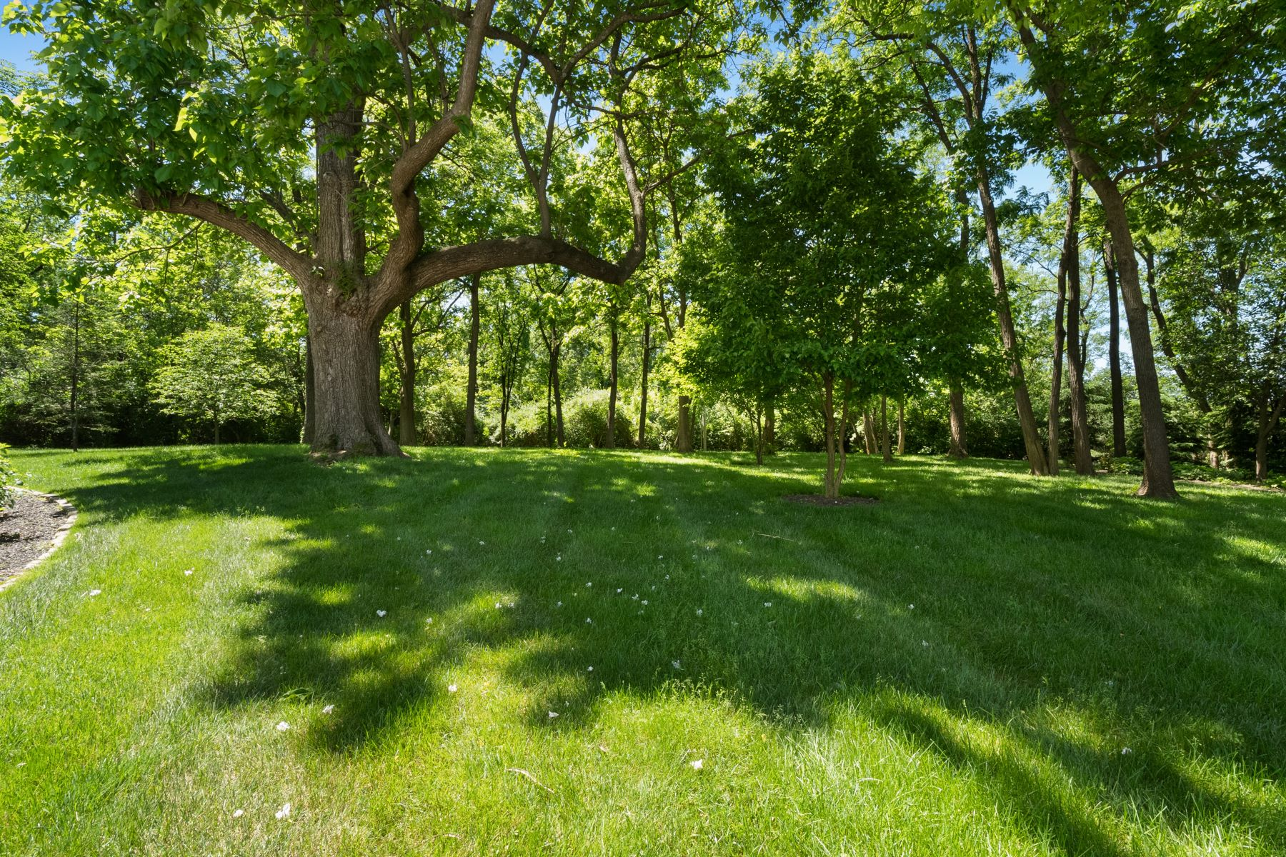 Additional photo for property listing at Entertainer's Dream 12562 Windmoor Place Town And Country, Missouri 63131 United States