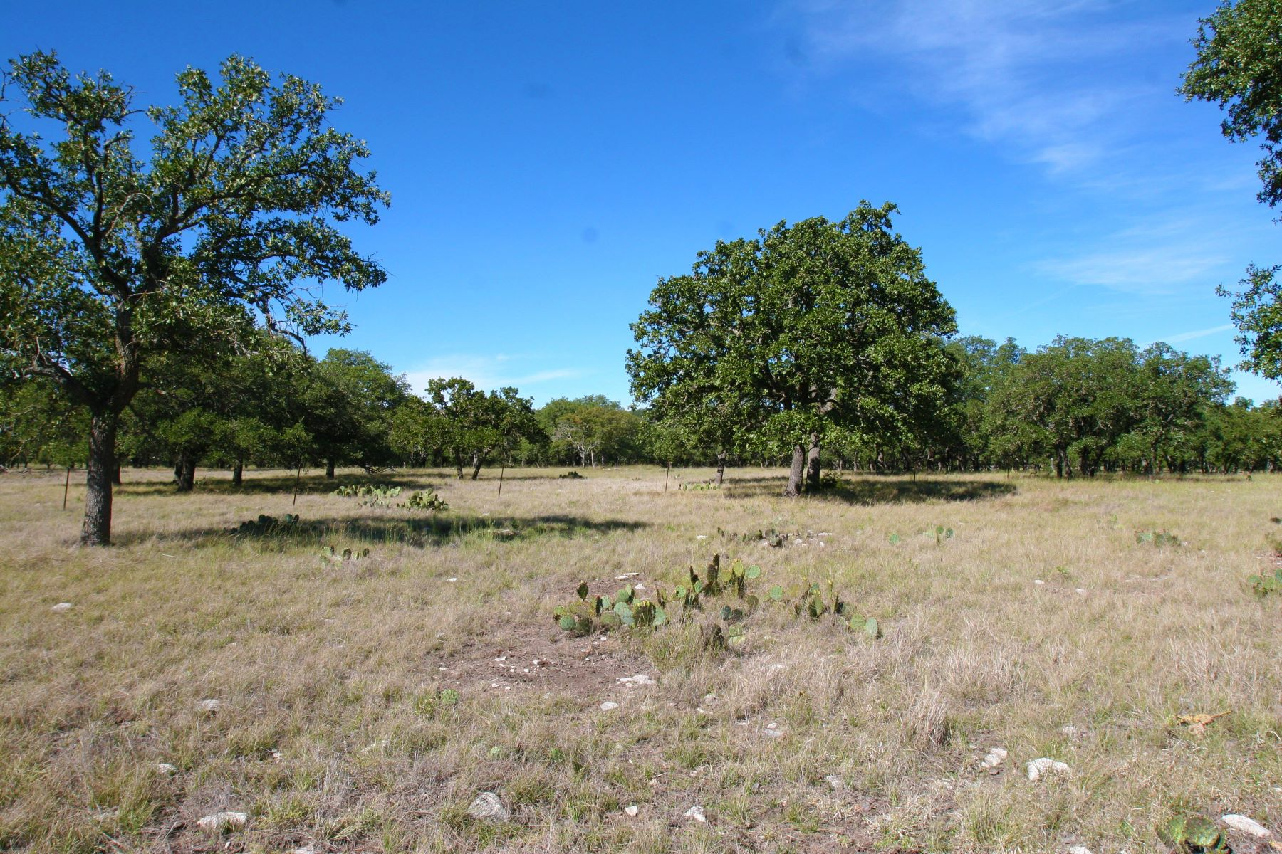 Hacienda / Granja / Rancho / Plantación por un Venta en Notable Texas Century Ranch 244+/- acres / Gillespie County Harper, Texas 78631 Estados Unidos