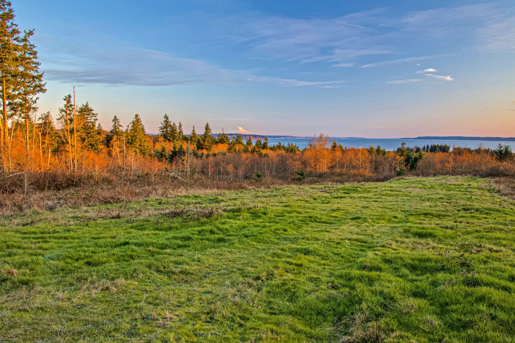 Land for Sale at 23XX Thompson Rd, Langley, WA 98260 23XX Thompson Rd Langley, Washington 98260 United States