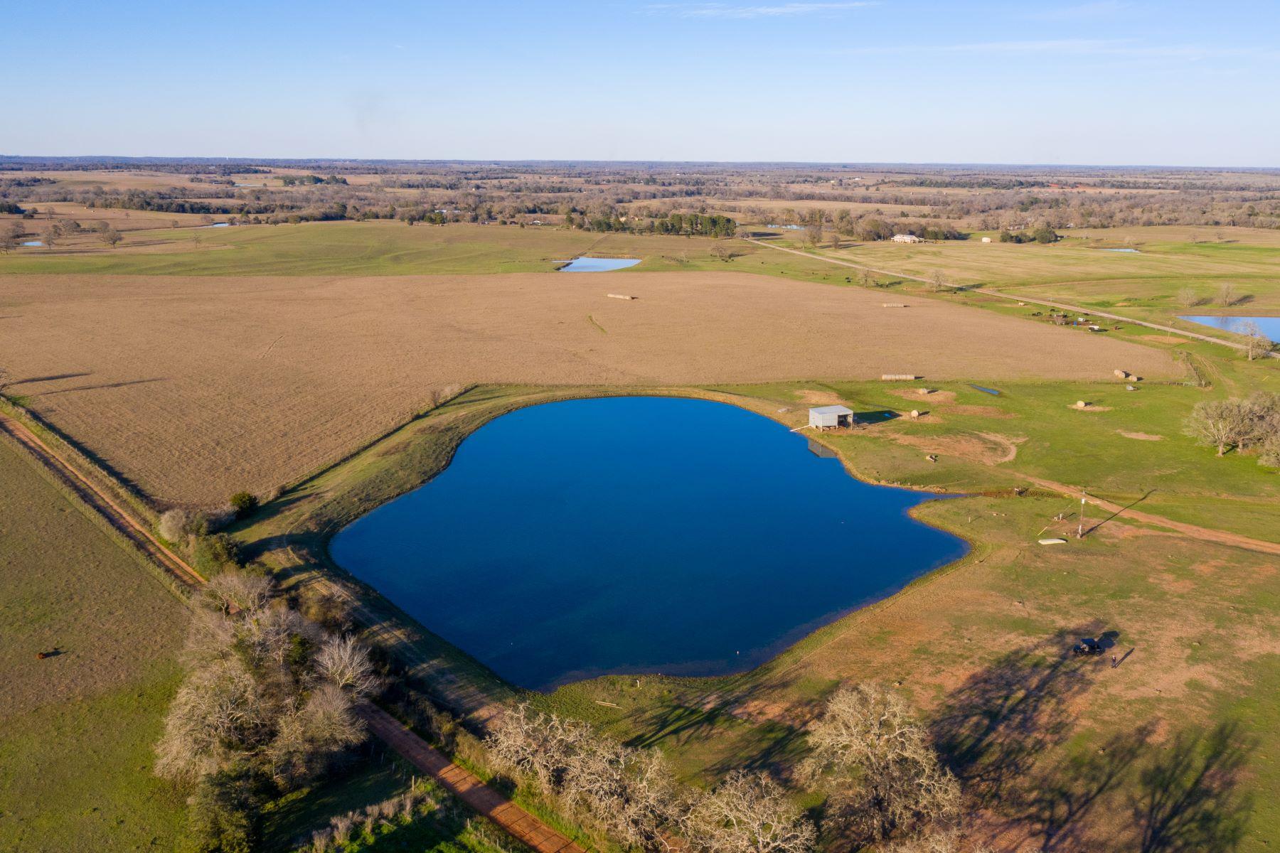 Landgut / Bauernhof / Plantage für Verkauf beim Sunset Farm 1975 County Road 326, Giddings, Texas 78942 Vereinigte Staaten