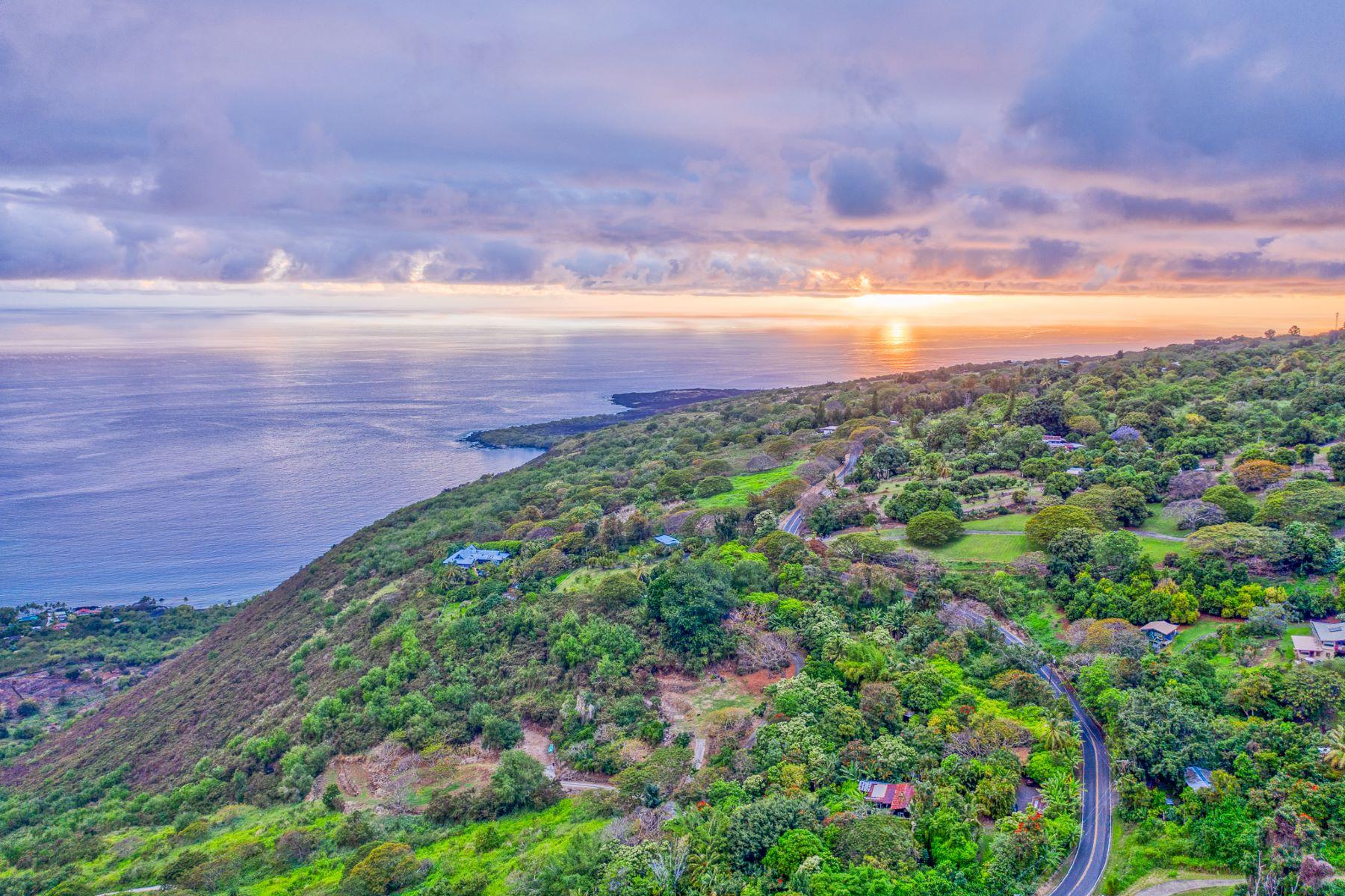 农场 / 牧场 / 种植园 为 销售 在 82-5989 Napoopoo Road, Captain Cook, HI 96704 82-5989 Napoopoo Road Captain Cook, 夏威夷 96704 美国