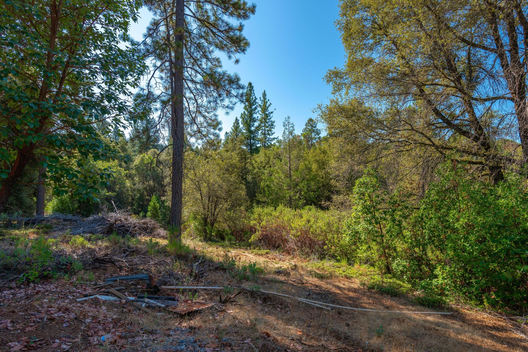 Land for Sale at Beautiful 23.72 Acre Lot Just Minutes From Pine Grove 15075 Moonlight Ridge Pine Grove, California 95665 United States