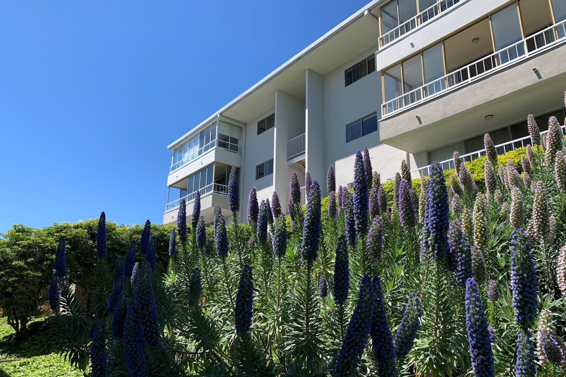 Condominiums for Sale at 32724 Coastsite Drive #203, Rancho Palos Verdes, CA 90275 32724 Coastsite Drive #203 Rancho Palos Verdes, California 90275 United States