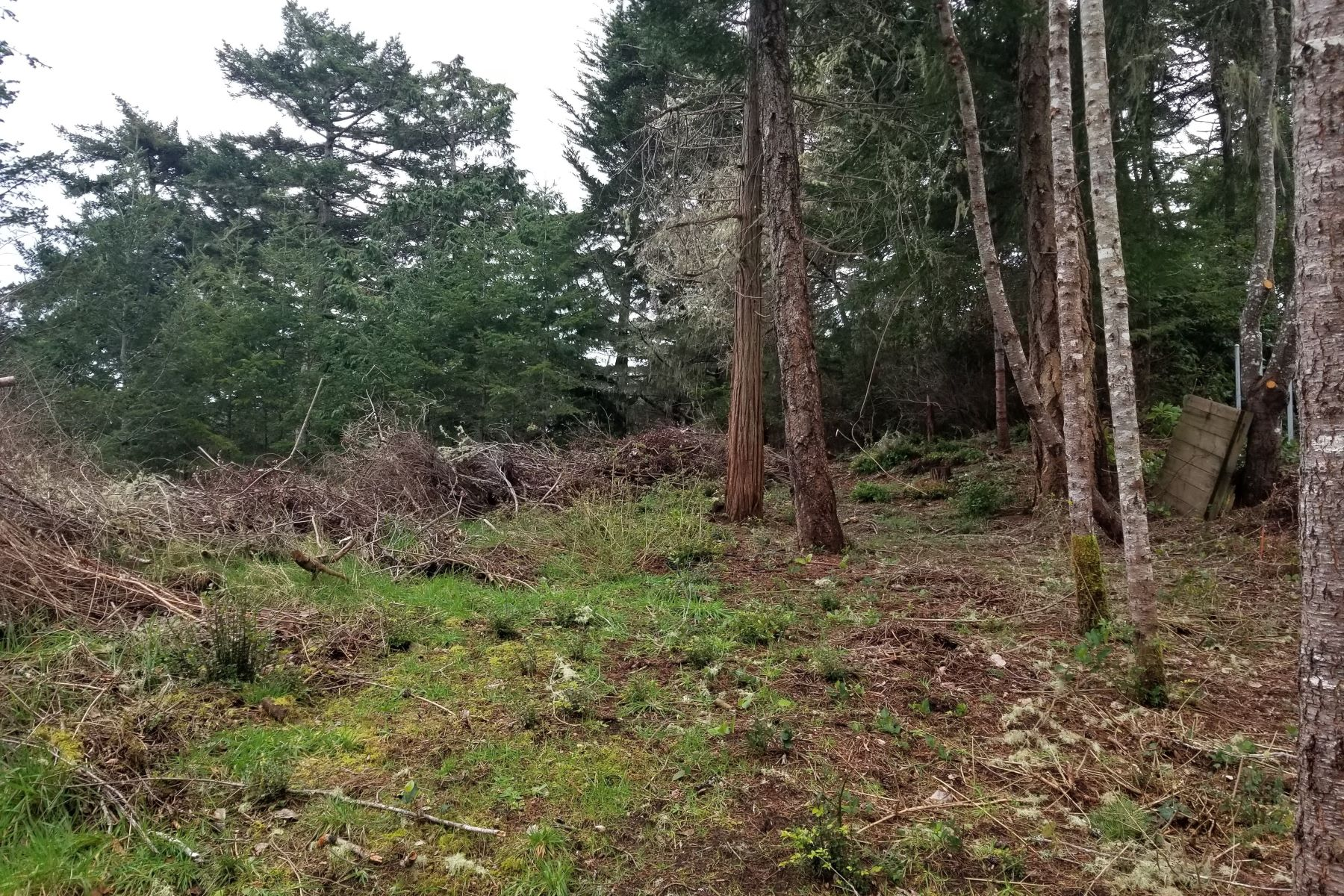 Land for Active at 0 John Avenue, Coos Bay, OR 97420 0 John Avenue Coos Bay, Oregon 97420 United States