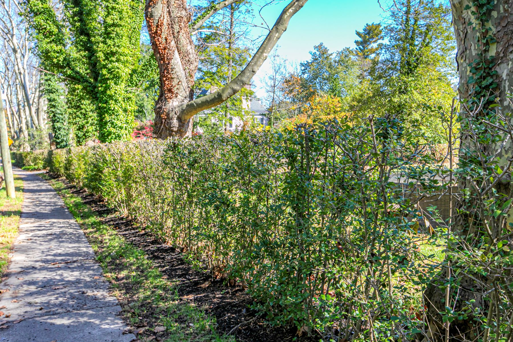 Additional photo for property listing at An Unheard Of Opportunity On Hodge Road 140 Hodge Road, Princeton, New Jersey 08540 Hoa Kỳ