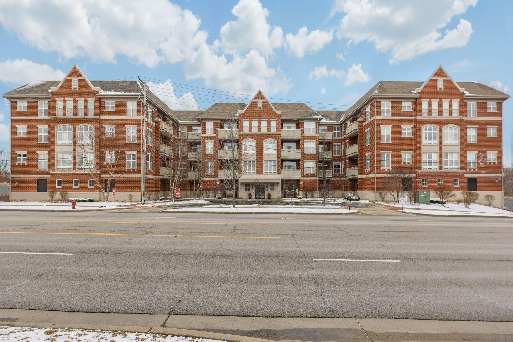 Condominiums για την Πώληση στο 77 N Quentin Road, Palatine, IL 60067 77 N Quentin Road Unit 310, Palatine, Ιλινοϊσ 60067 Ηνωμένες Πολιτείες