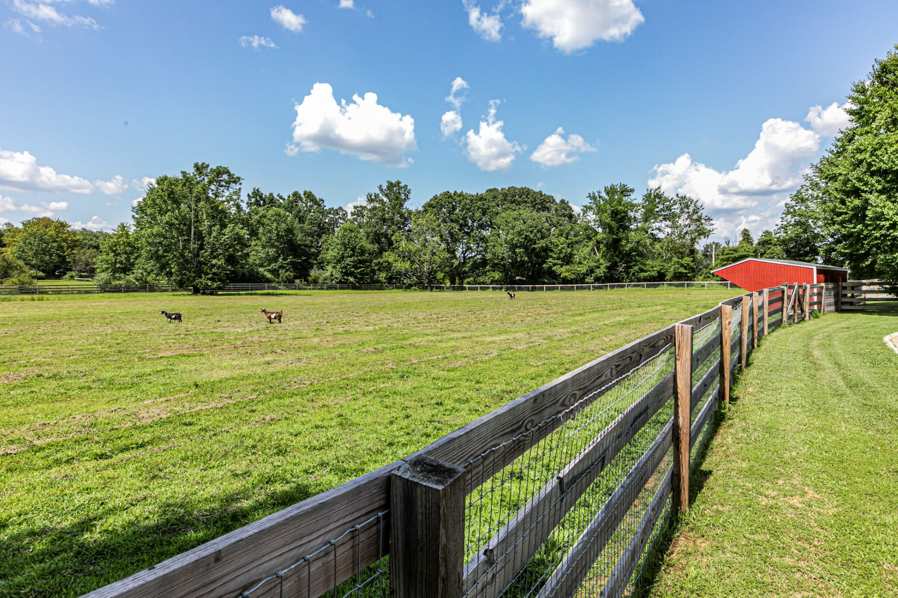 Additional photo for property listing at Your Very Own Gentleman's Farm Just Beyond The Borough 131 Hopewell Wertsville Road, Hopewell, New Jersey 08525 United States