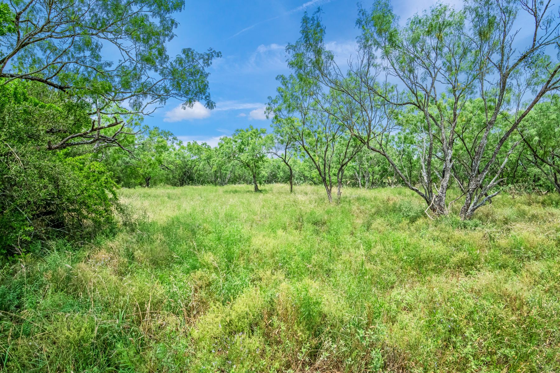 Land for Sale at New Development Silesia In A Supreme Location 14663 Silesia Drive Lot 2 St. Hedwig, Texas 78152 United States