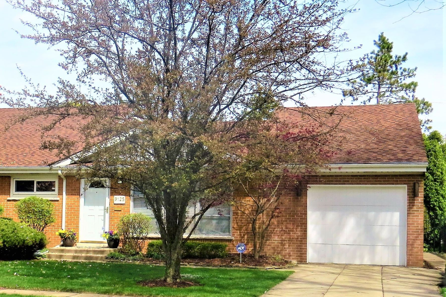 Single Family Home for Active at Amazing Move-In Ready Home 9125 Mango Avenue Morton Grove, Illinois 60053 United States