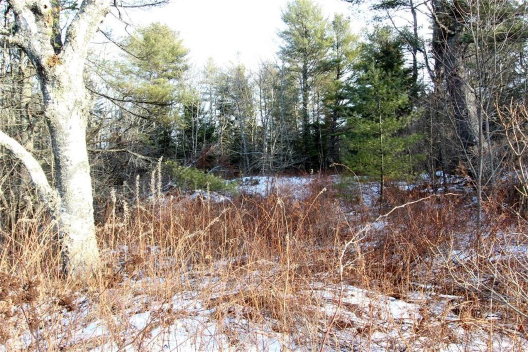 Land for Active at M208L20 Cushing Road Friendship, Maine 04547 United States
