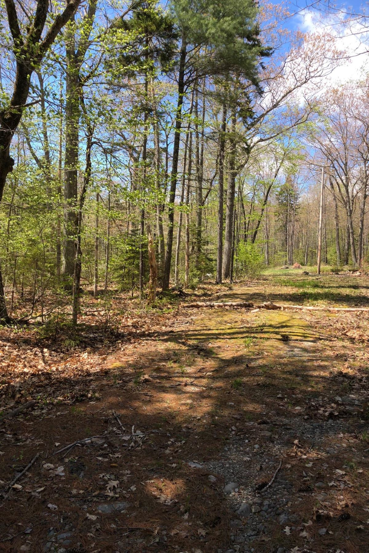 Land for Sale at Upland Road Camden, Maine 04843 United States