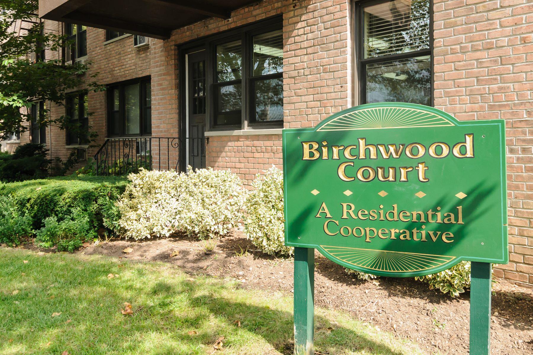 Co-op Properties für Verkauf beim Mineola 3 Birchwood Ct , 4A, Mineola, New York 11501 Vereinigte Staaten