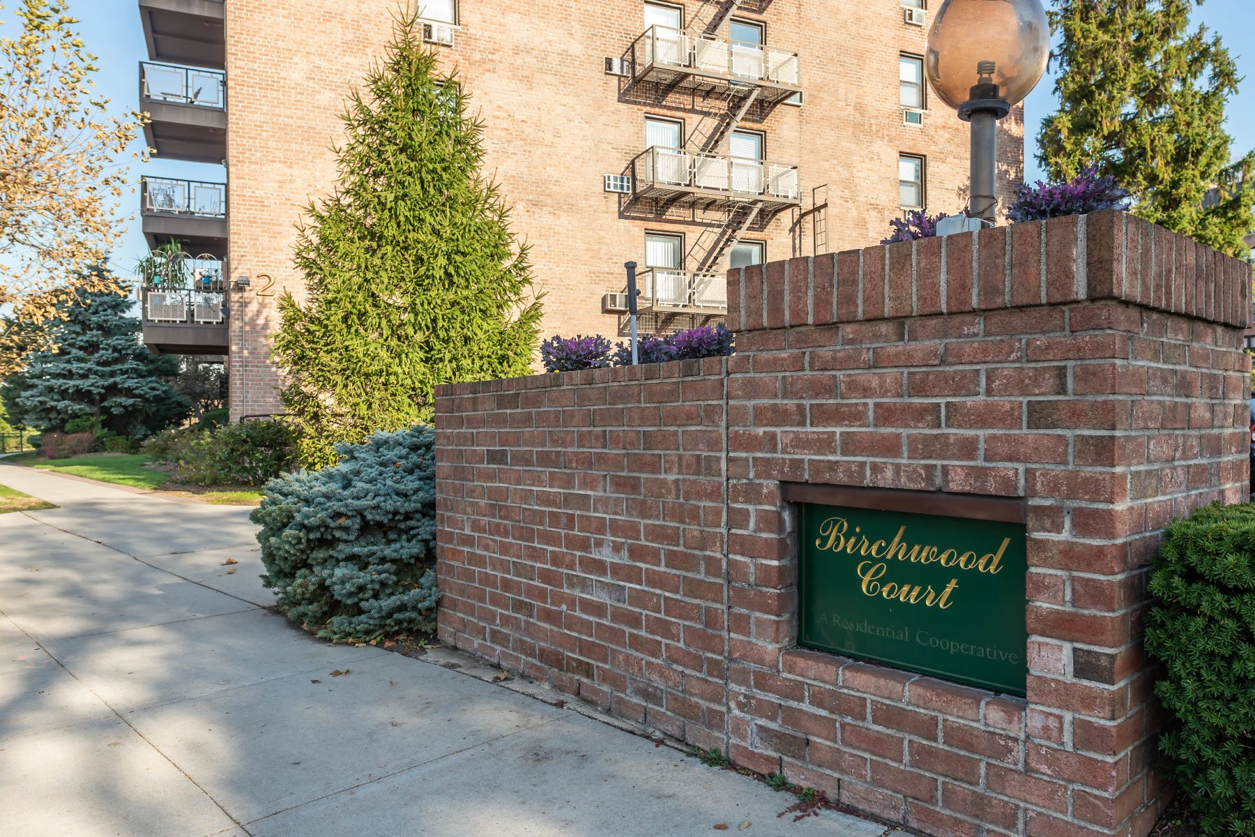 Co-op Properties for Active at Mineola 2 Birchwood Court , 1M Mineola, New York 11501 United States