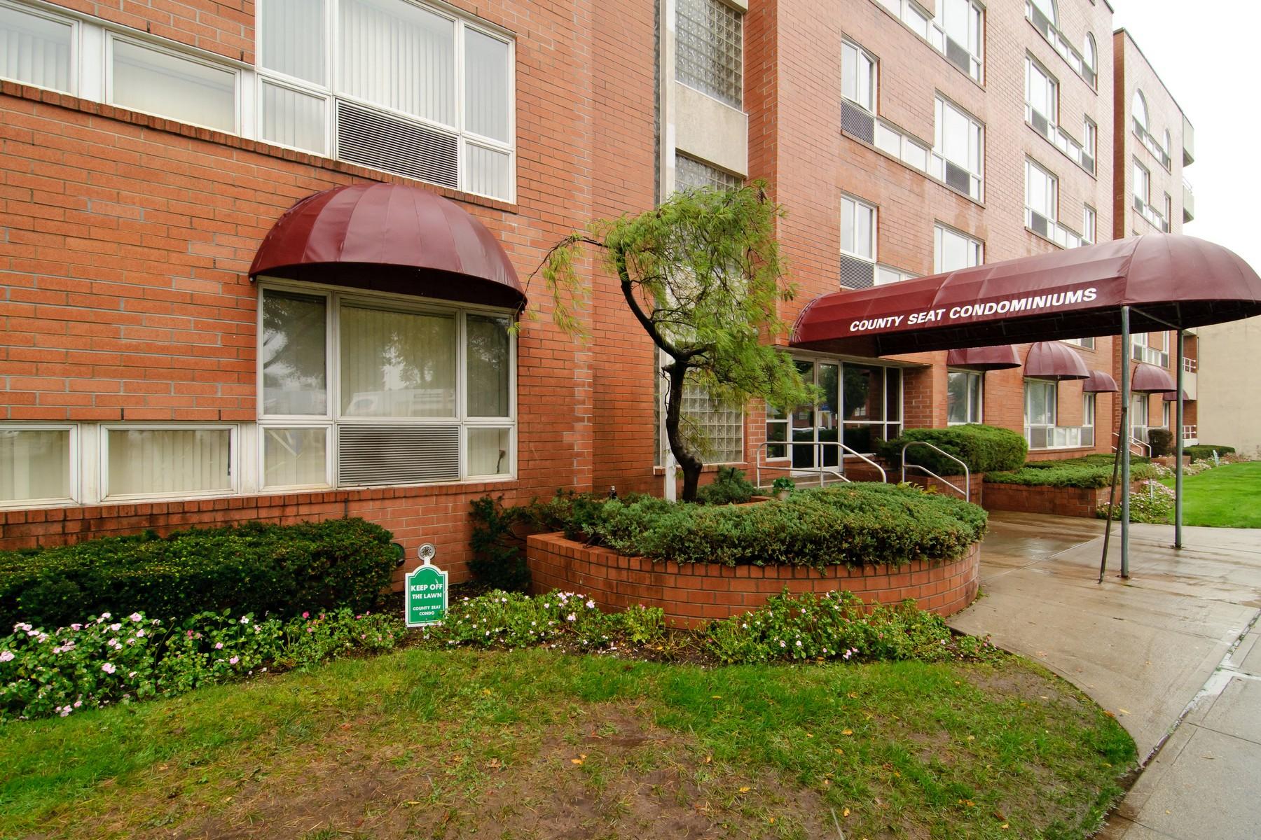 Condominiums for Active at 205 Mineola Blvd , 4F Mineola, New York 11501 United States