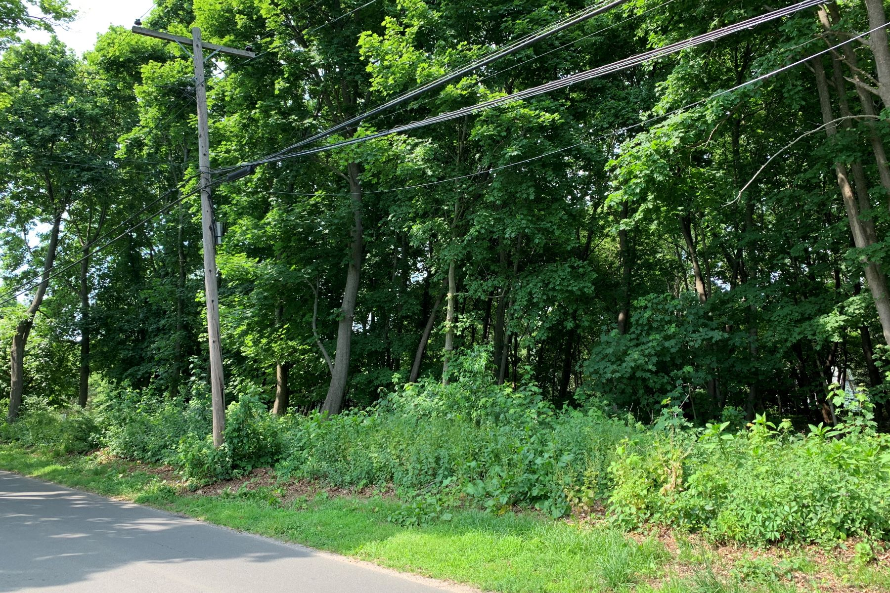 Land for Sale at Cutchogue 1895 Pequash Cutchogue, New York 11935 United States