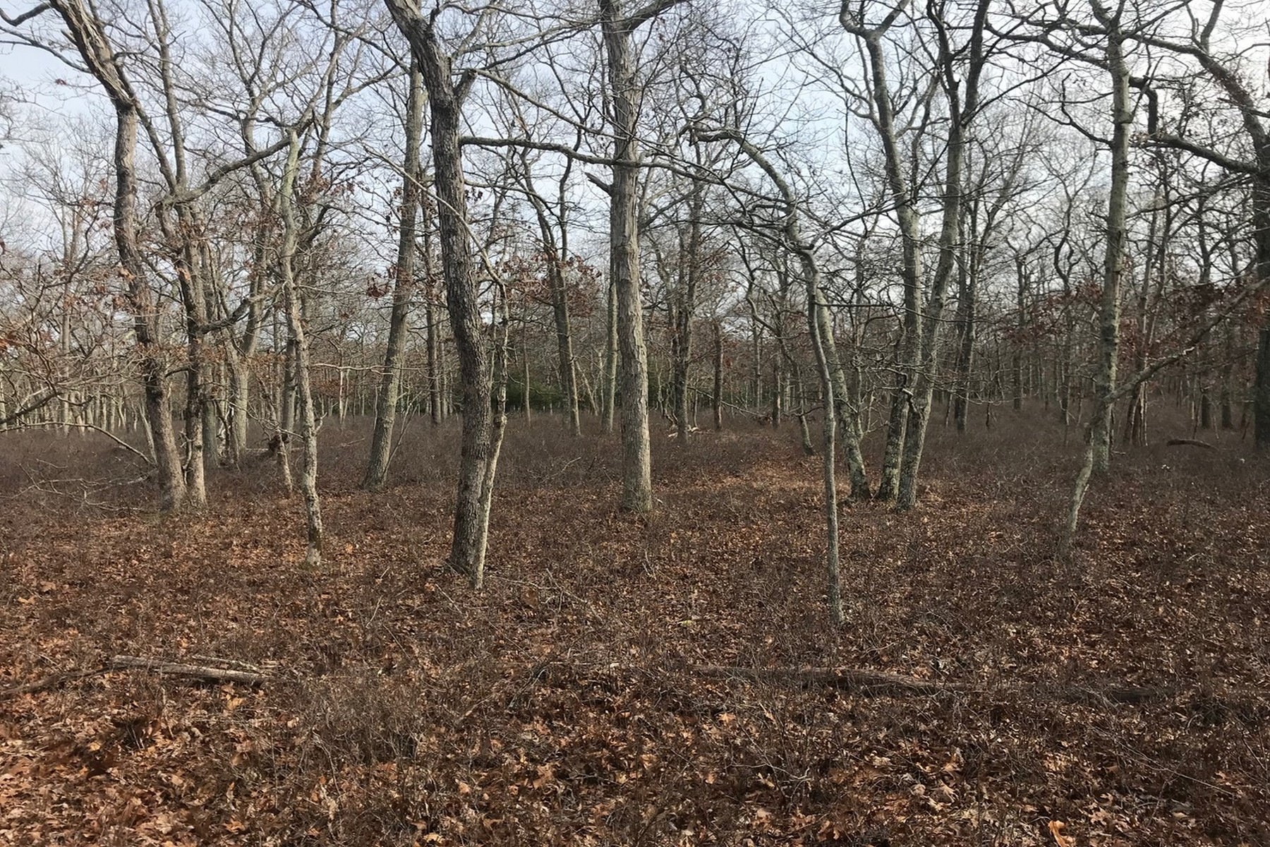 Land for Sale at Wainscott V/L Six Pole Highway Hwy East Hampton, New York 11937 United States