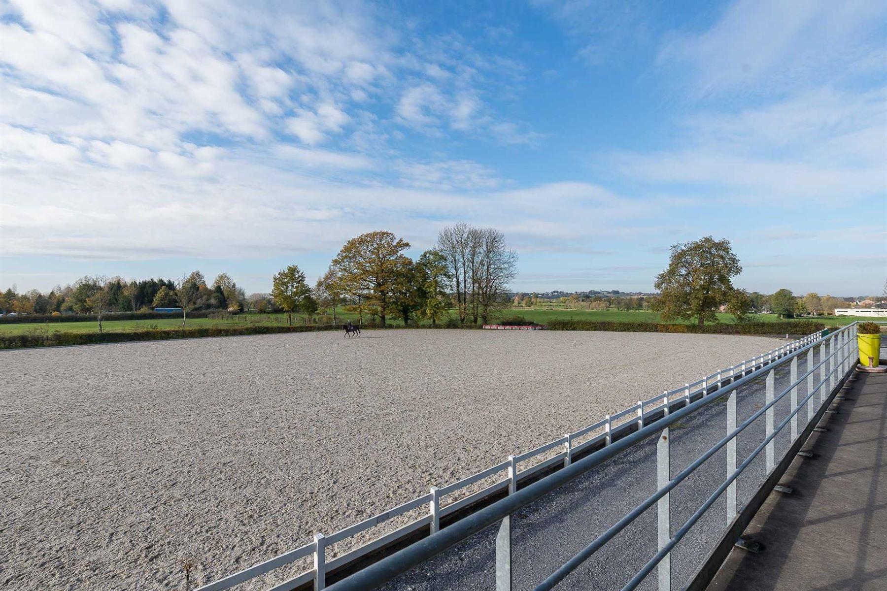 农场 / 牧场 / 种植园 为 销售 在 Liège I Equestrian Property Welkenraedt, Liege 4840 比利时