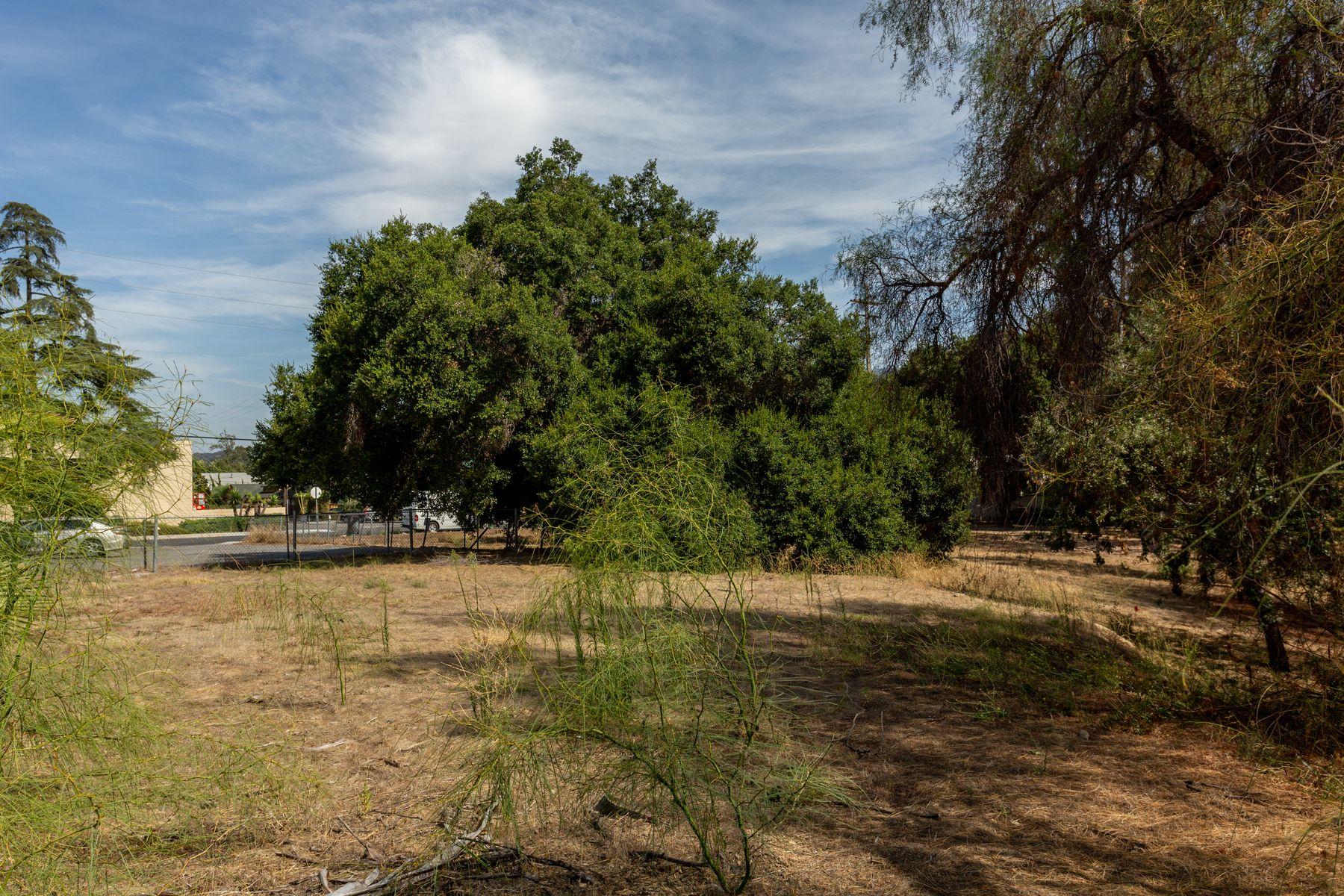 Additional photo for property listing at 1.4 acres Prime Development Site 323 Bryant Street Ojai, California 93023 Estados Unidos